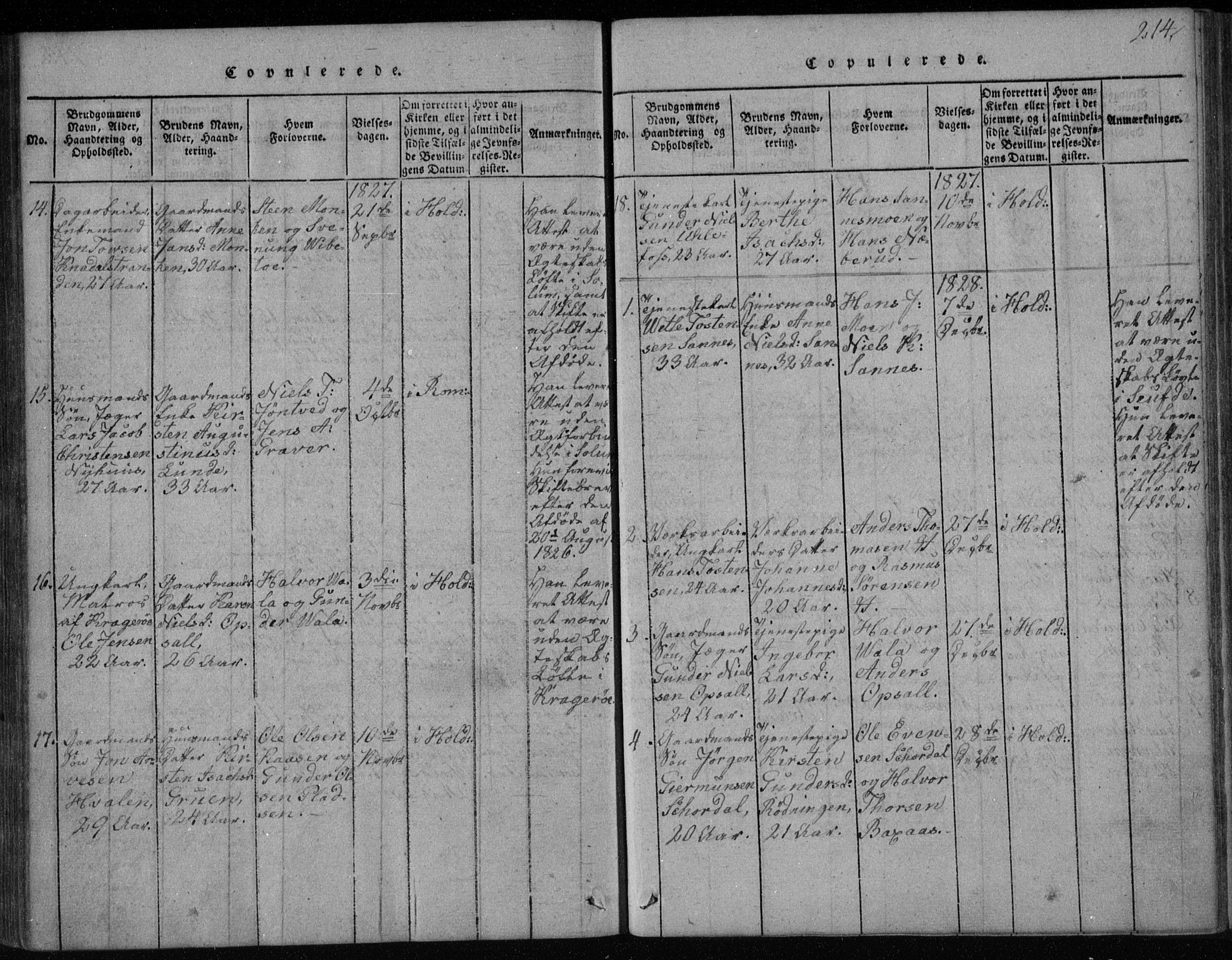 SAKO, Holla kirkebøker, F/Fa/L0003: Ministerialbok nr. 3, 1815-1830, s. 214