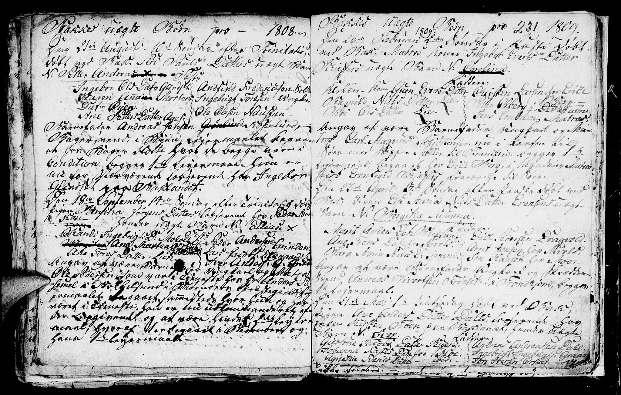 SAT, Ministerialprotokoller, klokkerbøker og fødselsregistre - Sør-Trøndelag, 604/L0218: Klokkerbok nr. 604C01, 1754-1819, s. 231