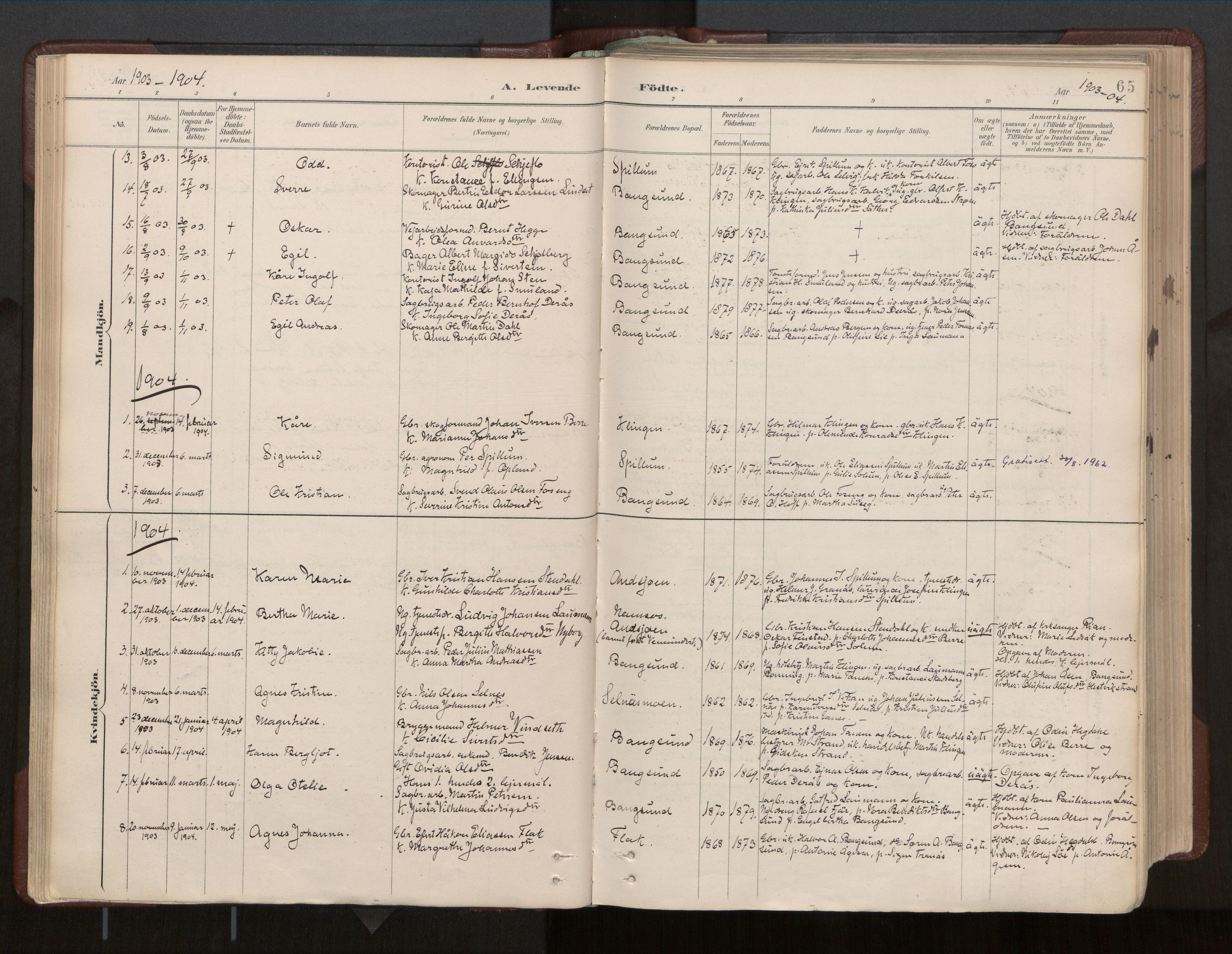 SAT, Ministerialprotokoller, klokkerbøker og fødselsregistre - Nord-Trøndelag, 770/L0589: Ministerialbok nr. 770A03, 1887-1929, s. 65