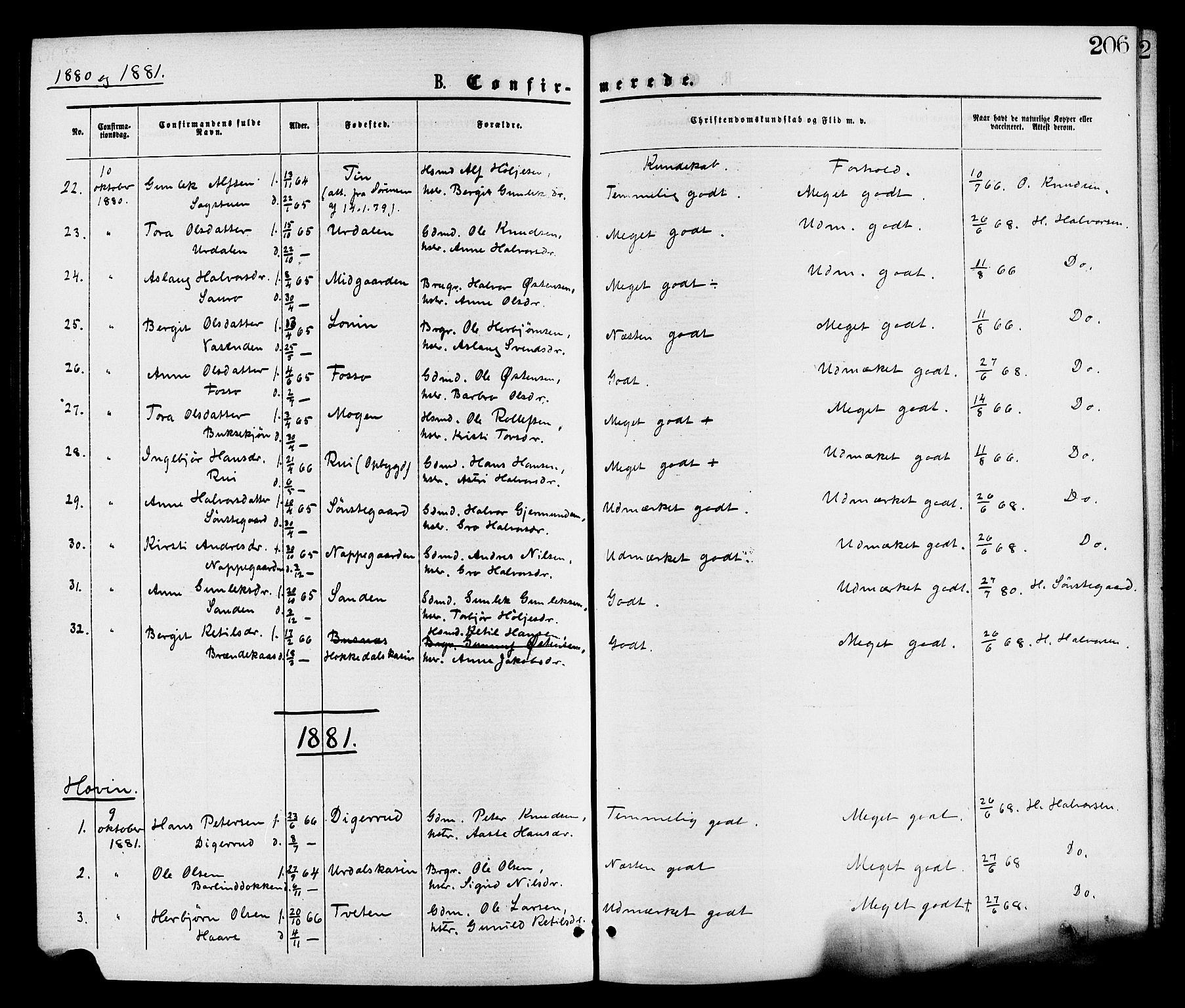 SAKO, Gransherad kirkebøker, F/Fa/L0004: Ministerialbok nr. I 4, 1871-1886, s. 206