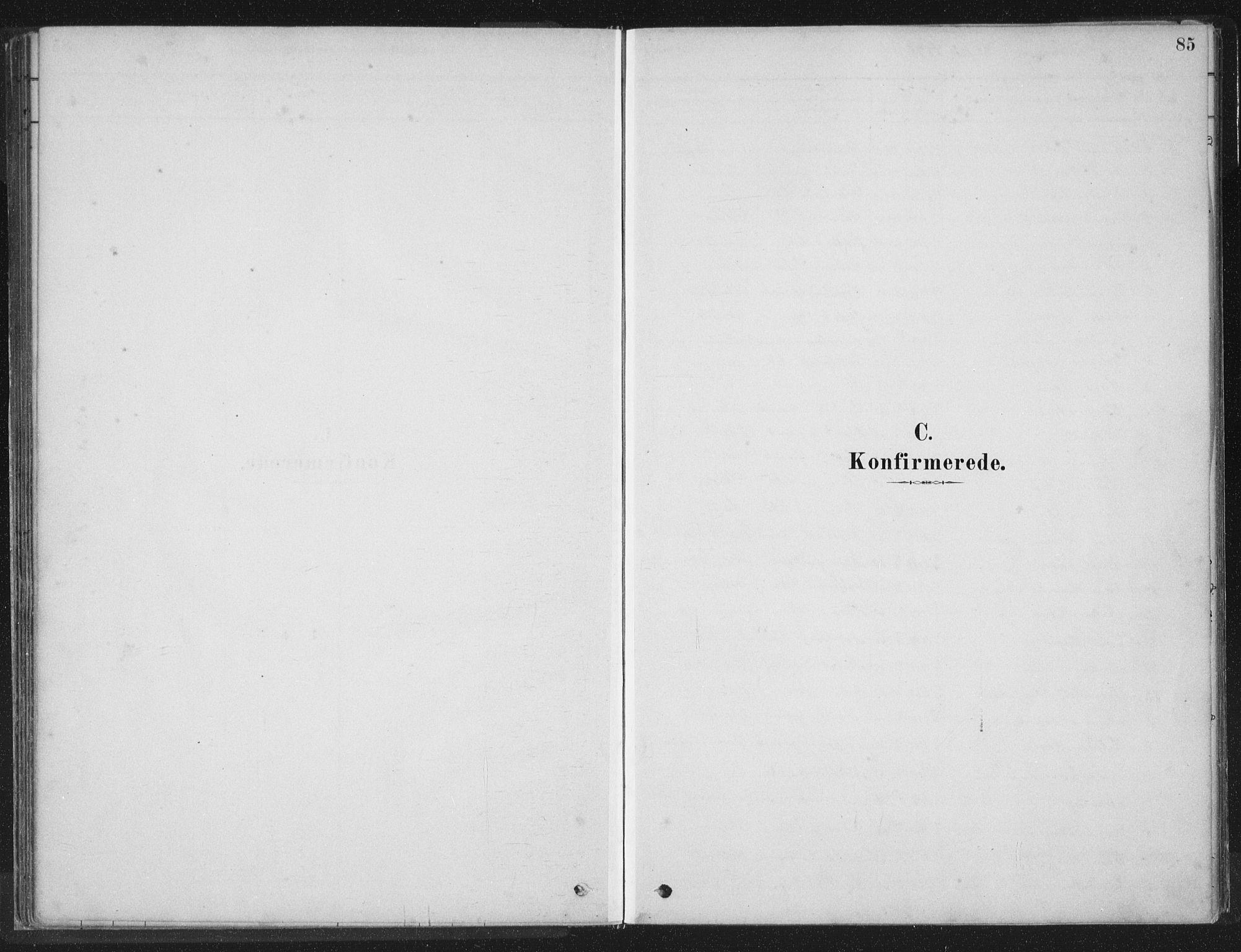 SAT, Ministerialprotokoller, klokkerbøker og fødselsregistre - Nord-Trøndelag, 788/L0697: Ministerialbok nr. 788A04, 1878-1902, s. 85