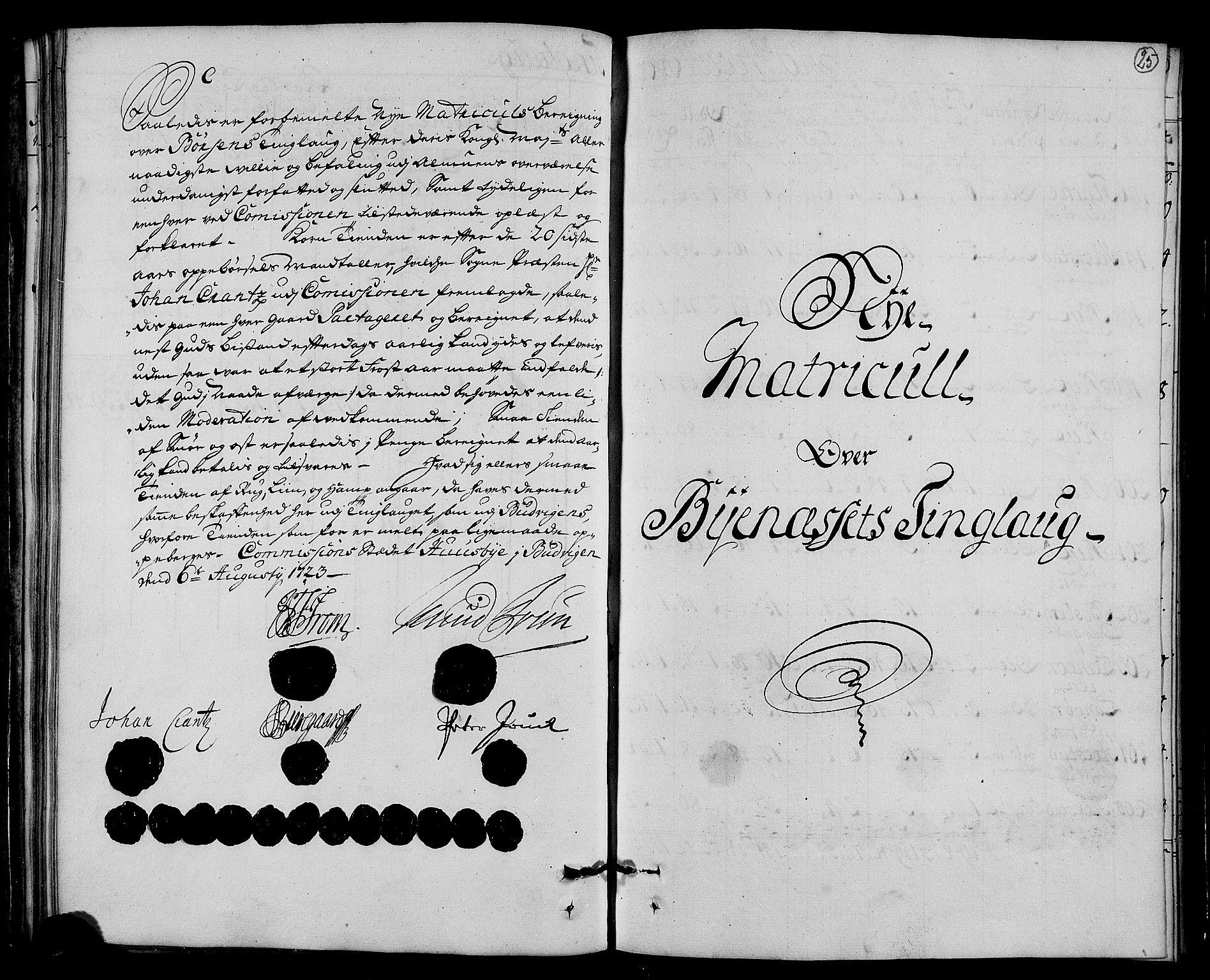 RA, Rentekammeret inntil 1814, Realistisk ordnet avdeling, N/Nb/Nbf/L0161: Strinda og Selbu matrikkelprotokoll, 1723, s. 24b-25a