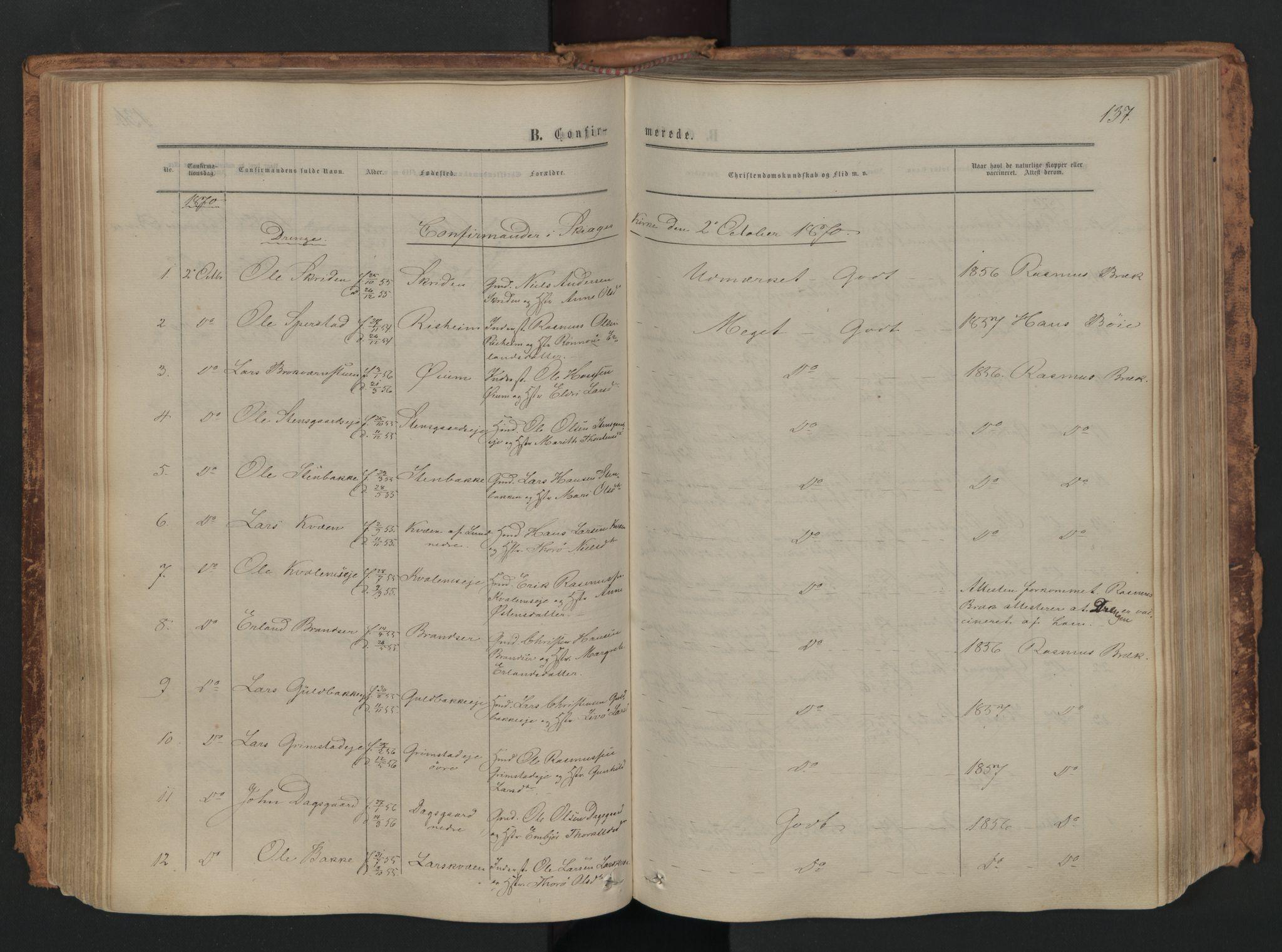 SAH, Skjåk prestekontor, Ministerialbok nr. 1, 1863-1879, s. 137