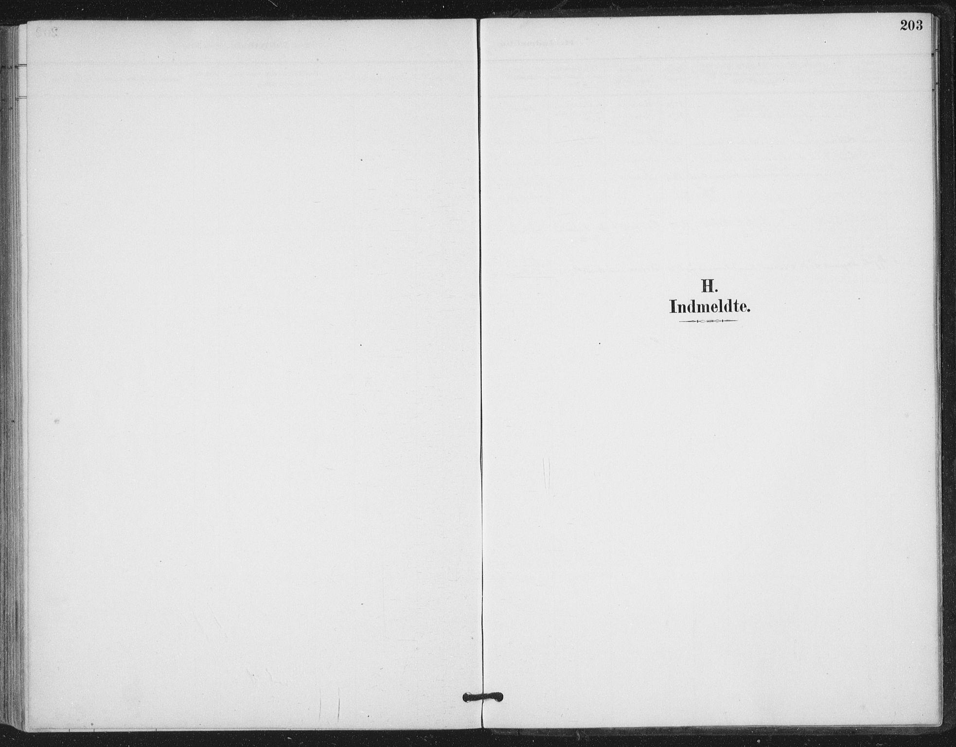 SAT, Ministerialprotokoller, klokkerbøker og fødselsregistre - Nord-Trøndelag, 780/L0644: Ministerialbok nr. 780A08, 1886-1903, s. 203