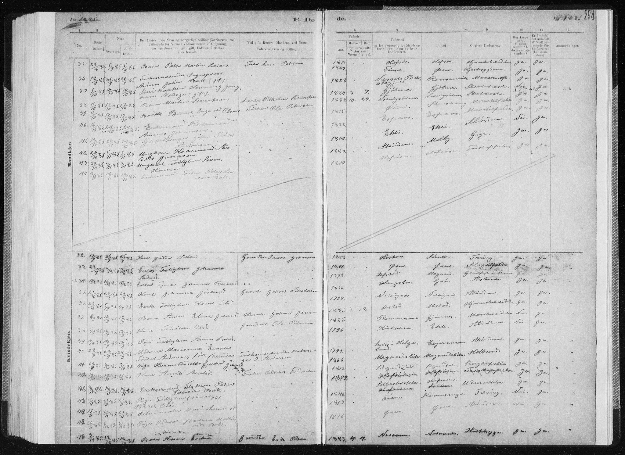 SAT, Ministerialprotokoller, klokkerbøker og fødselsregistre - Sør-Trøndelag, 668/L0818: Klokkerbok nr. 668C07, 1885-1898, s. 294