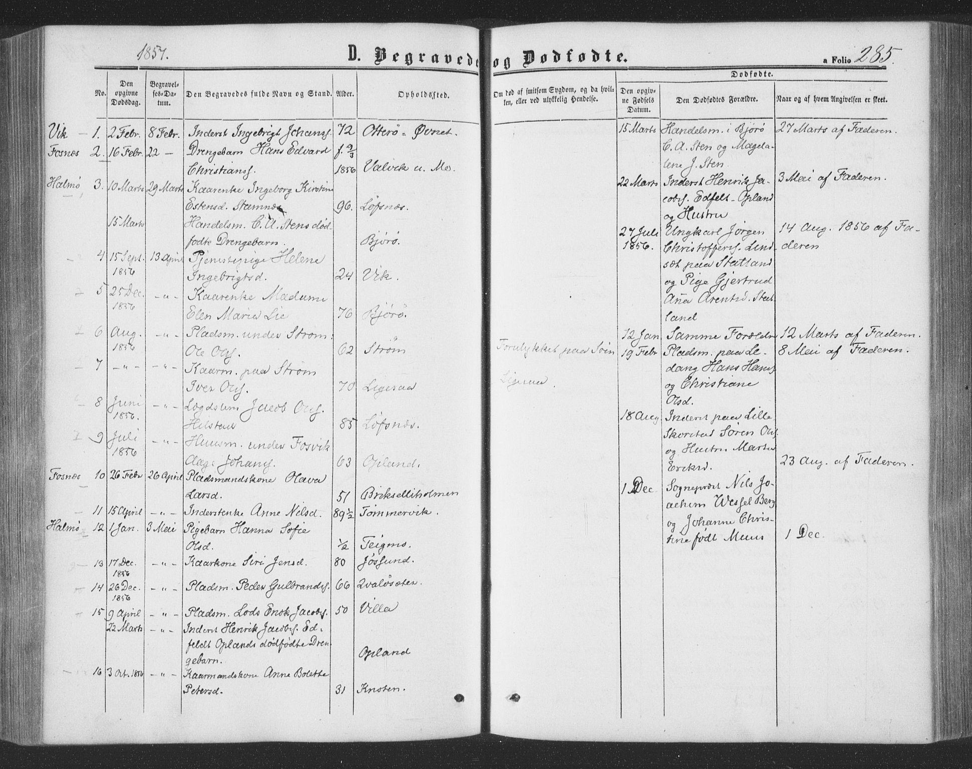 SAT, Ministerialprotokoller, klokkerbøker og fødselsregistre - Nord-Trøndelag, 773/L0615: Ministerialbok nr. 773A06, 1857-1870, s. 285
