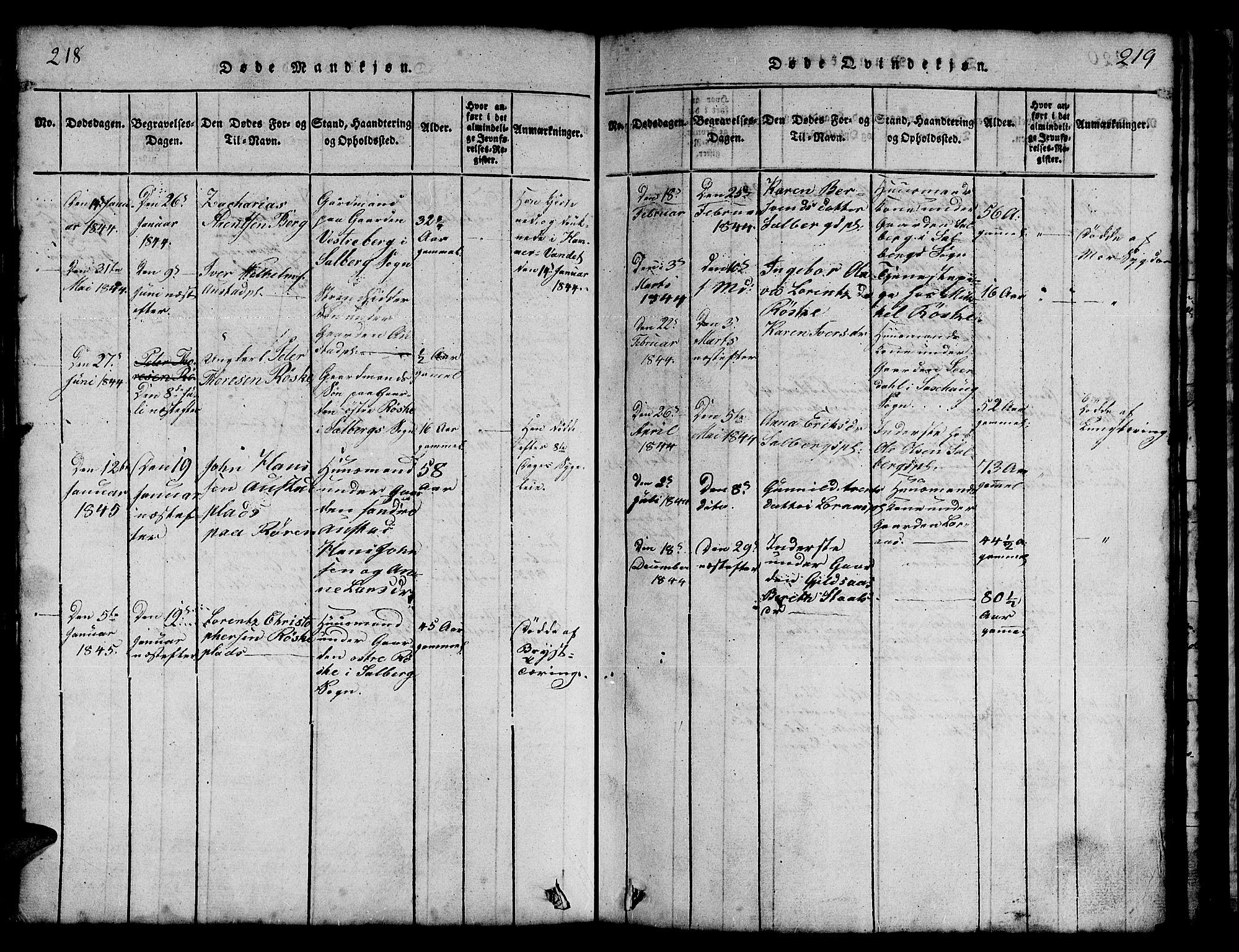 SAT, Ministerialprotokoller, klokkerbøker og fødselsregistre - Nord-Trøndelag, 731/L0310: Klokkerbok nr. 731C01, 1816-1874, s. 218-219