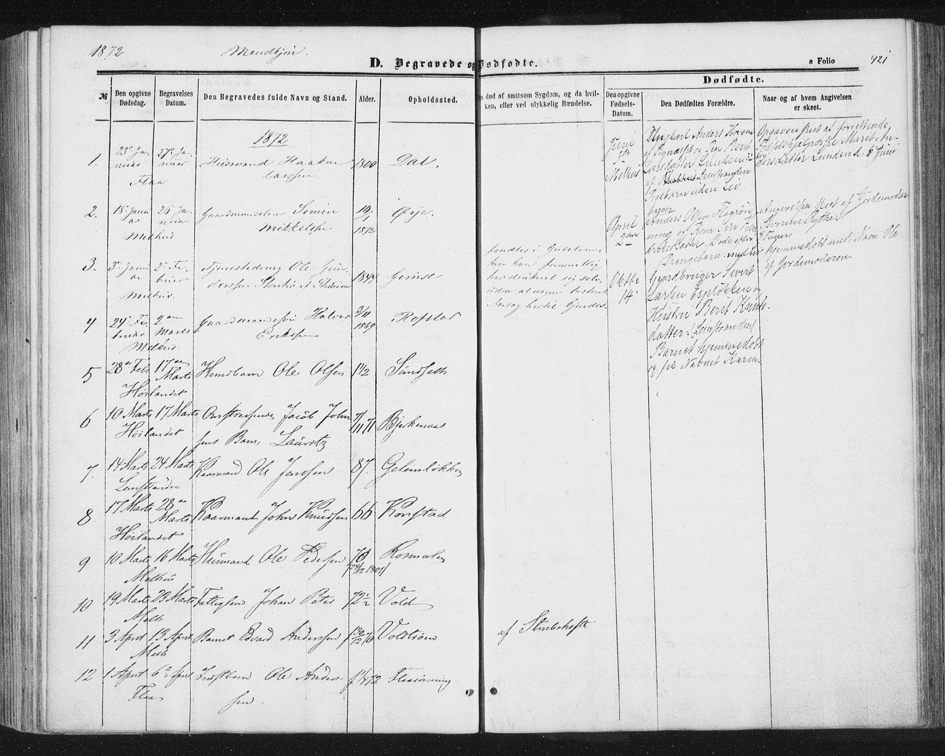 SAT, Ministerialprotokoller, klokkerbøker og fødselsregistre - Sør-Trøndelag, 691/L1077: Ministerialbok nr. 691A09, 1862-1873, s. 421