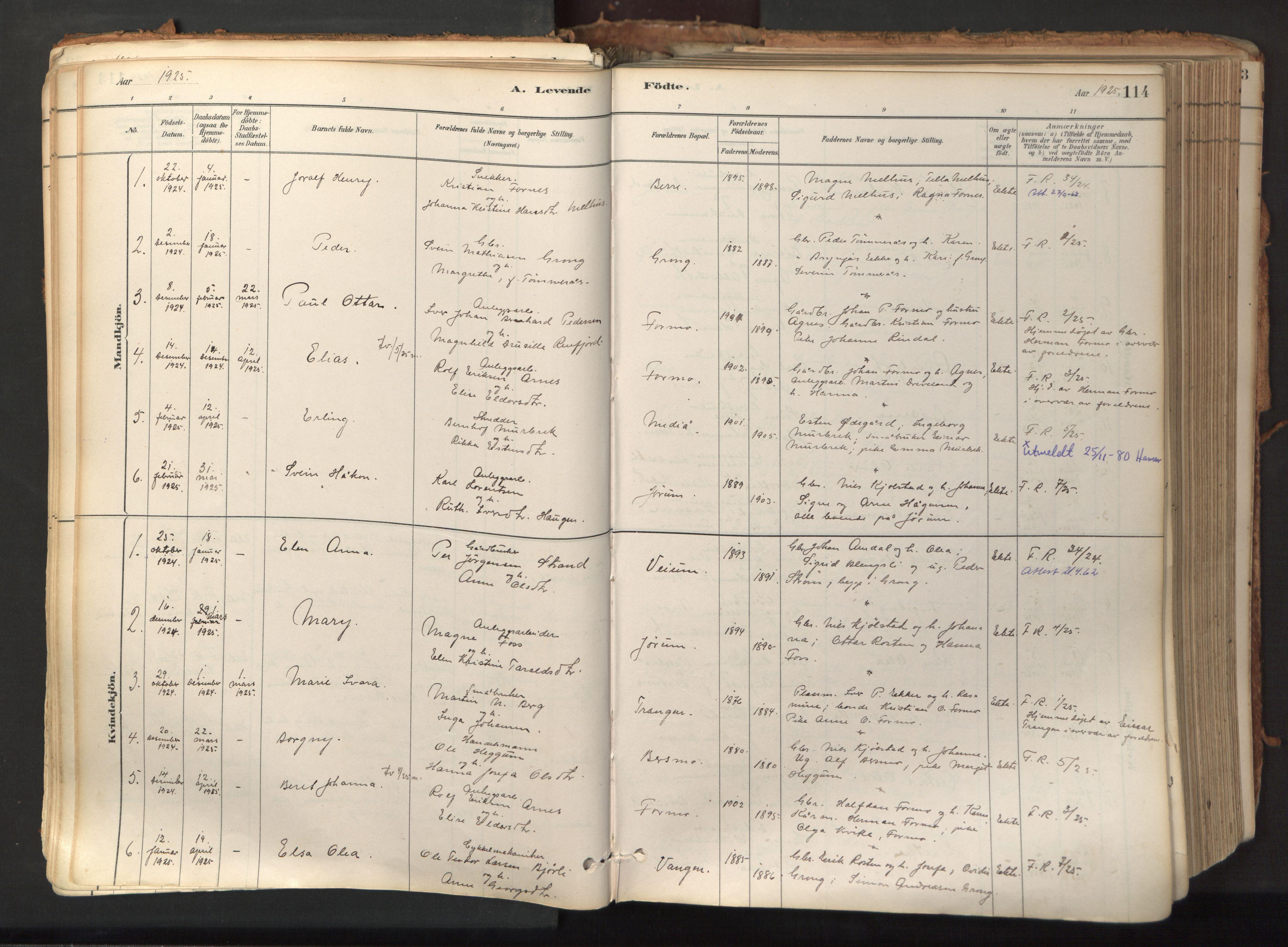 SAT, Ministerialprotokoller, klokkerbøker og fødselsregistre - Nord-Trøndelag, 758/L0519: Ministerialbok nr. 758A04, 1880-1926, s. 114