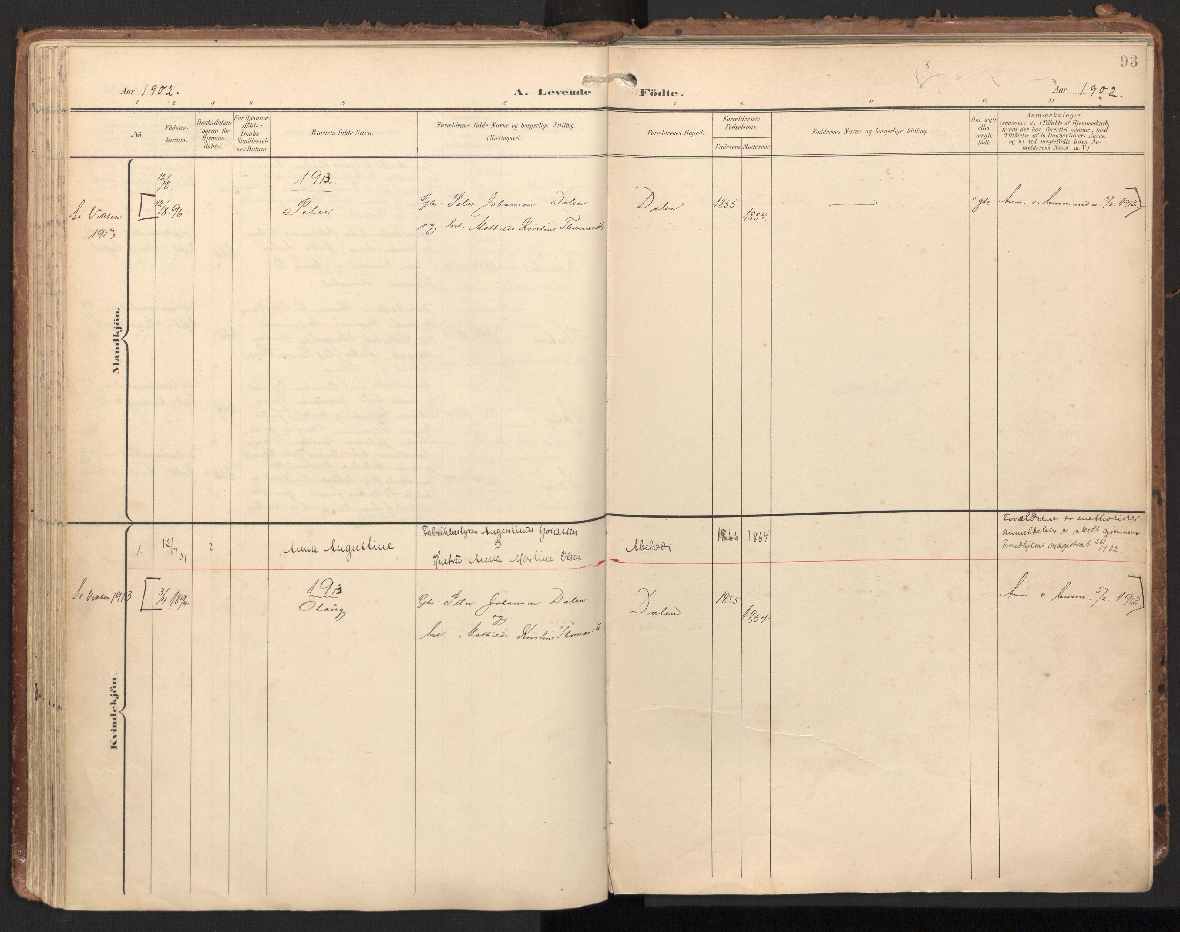 SAT, Ministerialprotokoller, klokkerbøker og fødselsregistre - Nord-Trøndelag, 784/L0677: Ministerialbok nr. 784A12, 1900-1920, s. 93