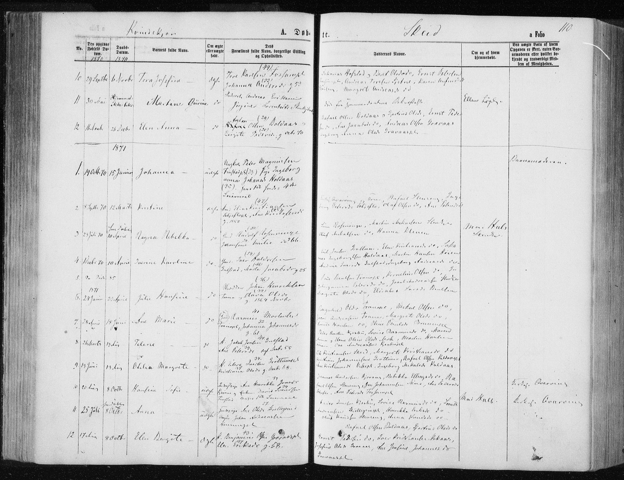 SAT, Ministerialprotokoller, klokkerbøker og fødselsregistre - Nord-Trøndelag, 735/L0345: Ministerialbok nr. 735A08 /2, 1863-1872, s. 110