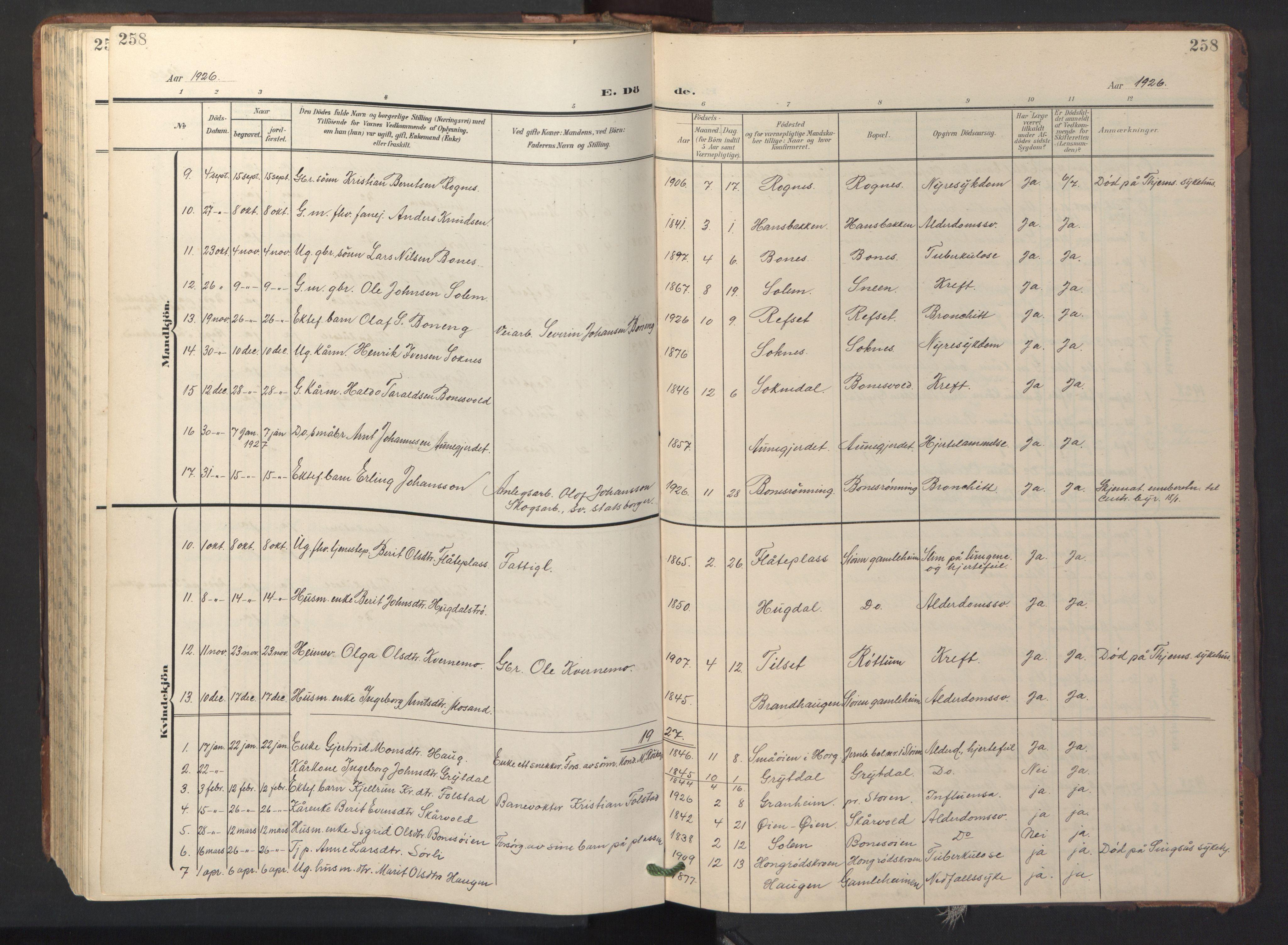 SAT, Ministerialprotokoller, klokkerbøker og fødselsregistre - Sør-Trøndelag, 687/L1019: Klokkerbok nr. 687C03, 1904-1931, s. 258