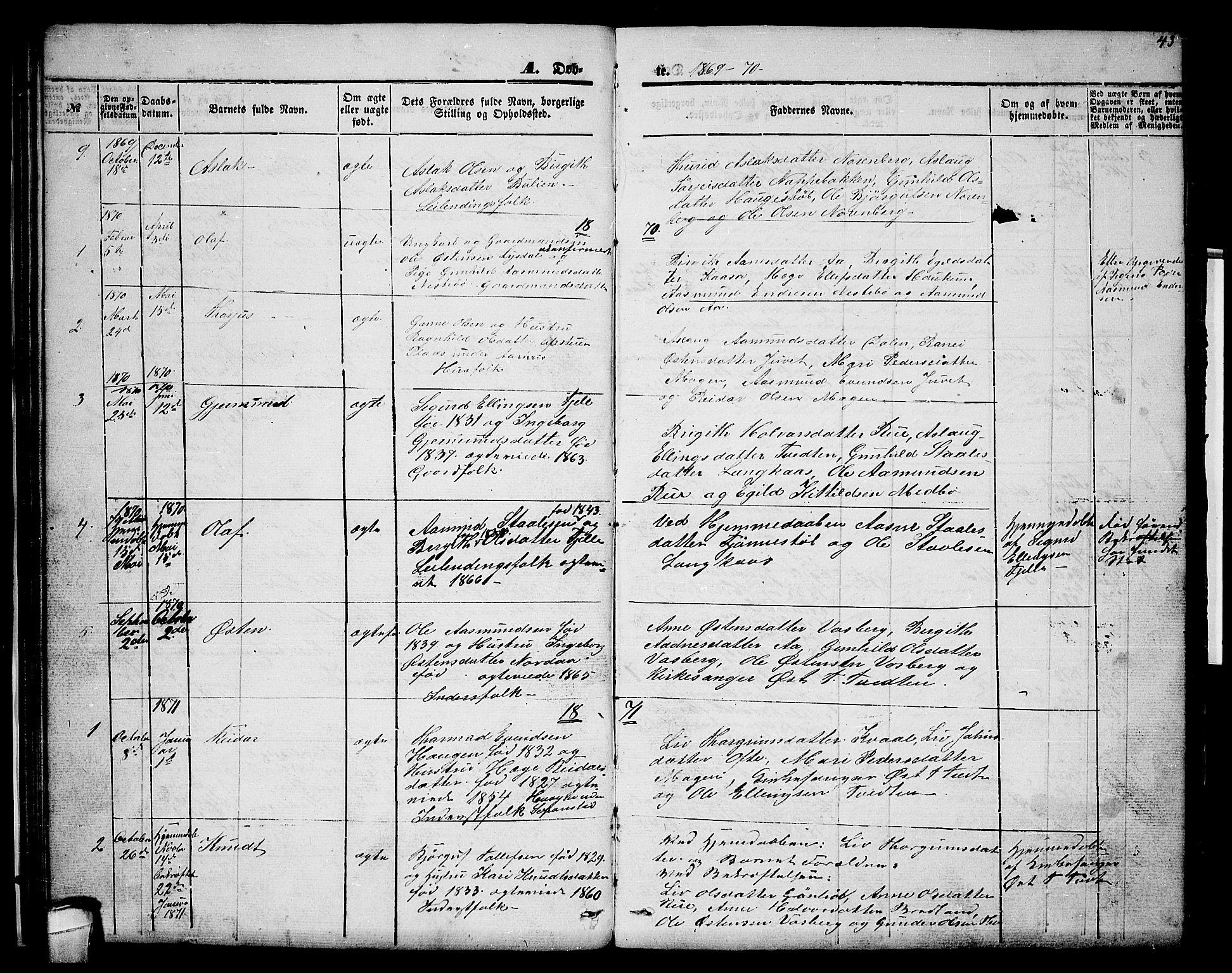 SAKO, Lårdal kirkebøker, G/Gc/L0002: Klokkerbok nr. III 2, 1852-1877, s. 43