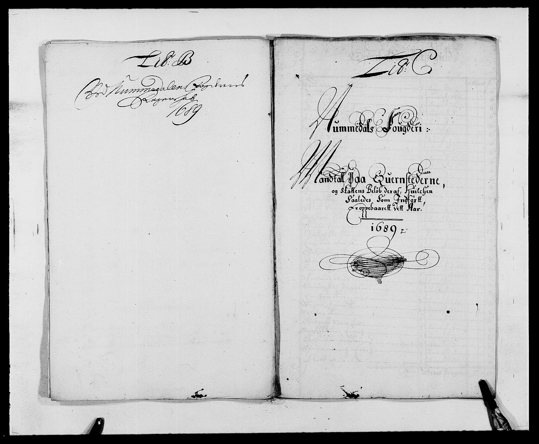RA, Rentekammeret inntil 1814, Reviderte regnskaper, Fogderegnskap, R64/L4422: Fogderegnskap Namdal, 1687-1689, s. 209