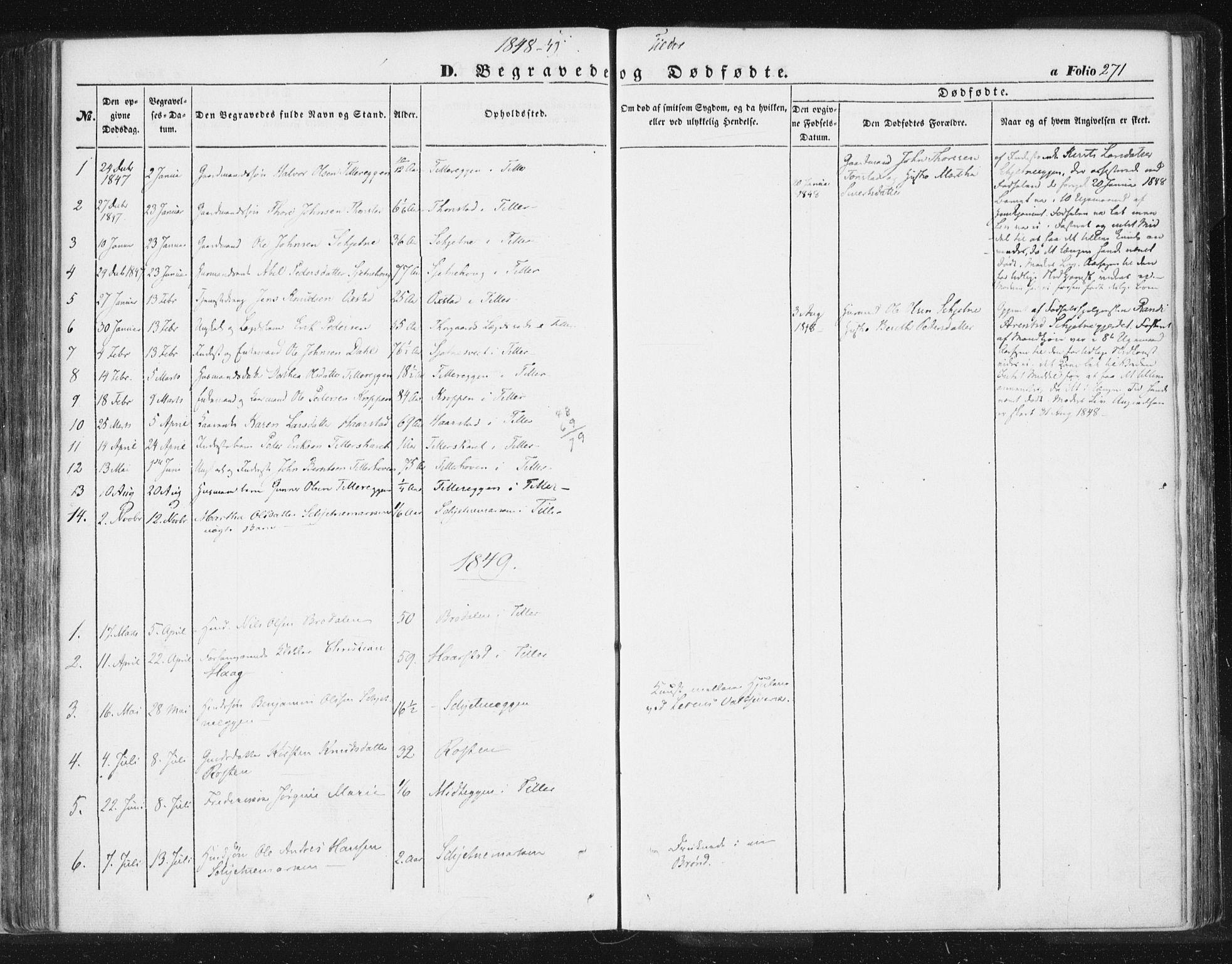 SAT, Ministerialprotokoller, klokkerbøker og fødselsregistre - Sør-Trøndelag, 618/L0441: Ministerialbok nr. 618A05, 1843-1862, s. 271