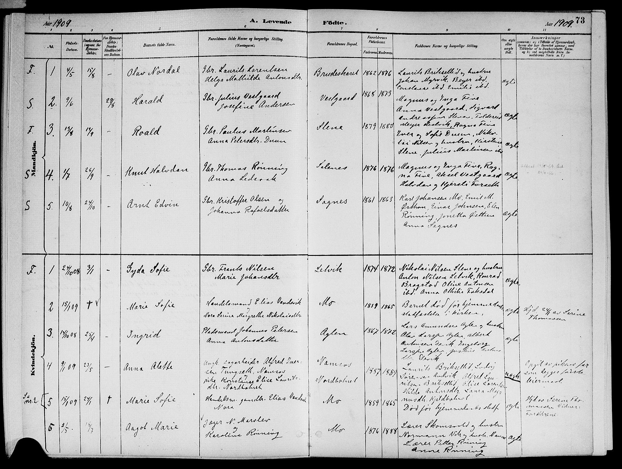 SAT, Ministerialprotokoller, klokkerbøker og fødselsregistre - Nord-Trøndelag, 773/L0617: Ministerialbok nr. 773A08, 1887-1910, s. 73