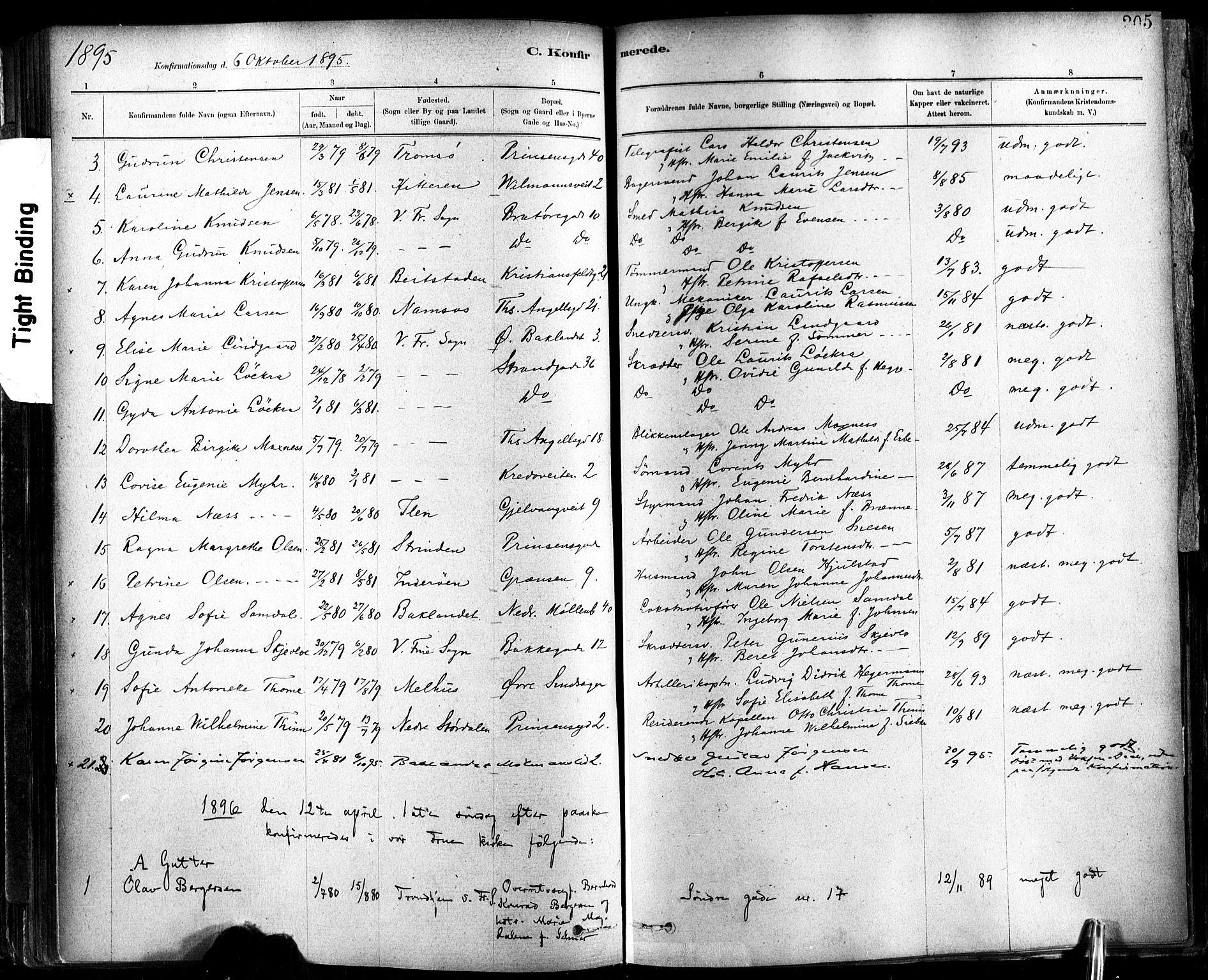 SAT, Ministerialprotokoller, klokkerbøker og fødselsregistre - Sør-Trøndelag, 602/L0119: Ministerialbok nr. 602A17, 1880-1901, s. 205