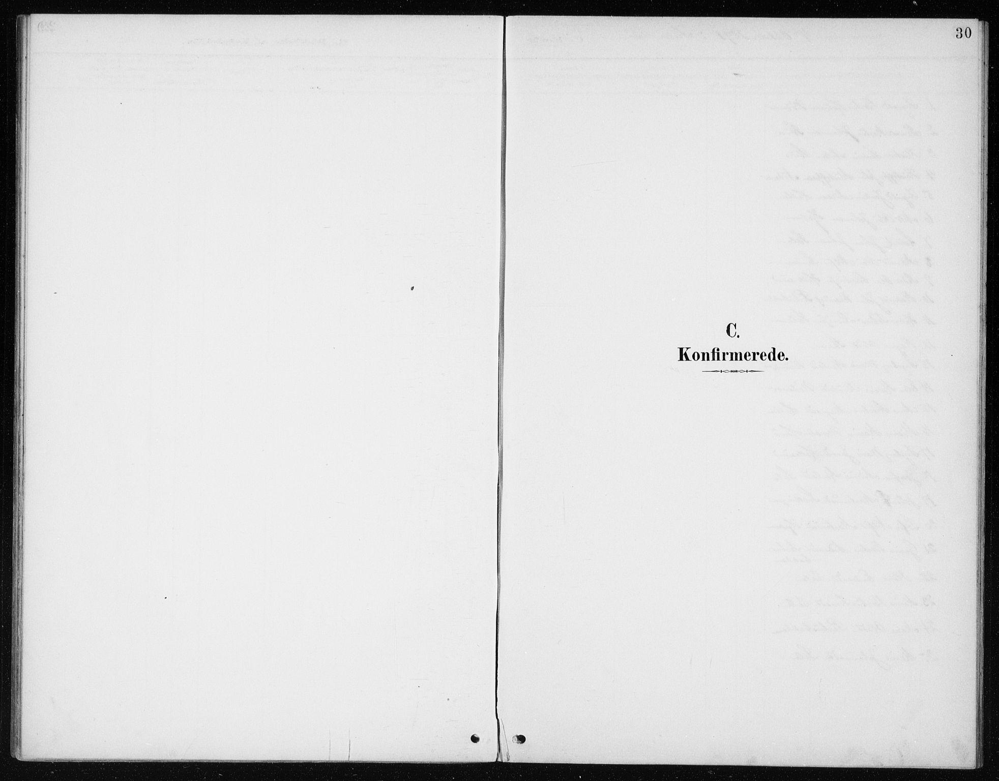 SAB, Manger Sokneprestembete, H/Haa: Ministerialbok nr. E  2, 1891-1902, s. 30