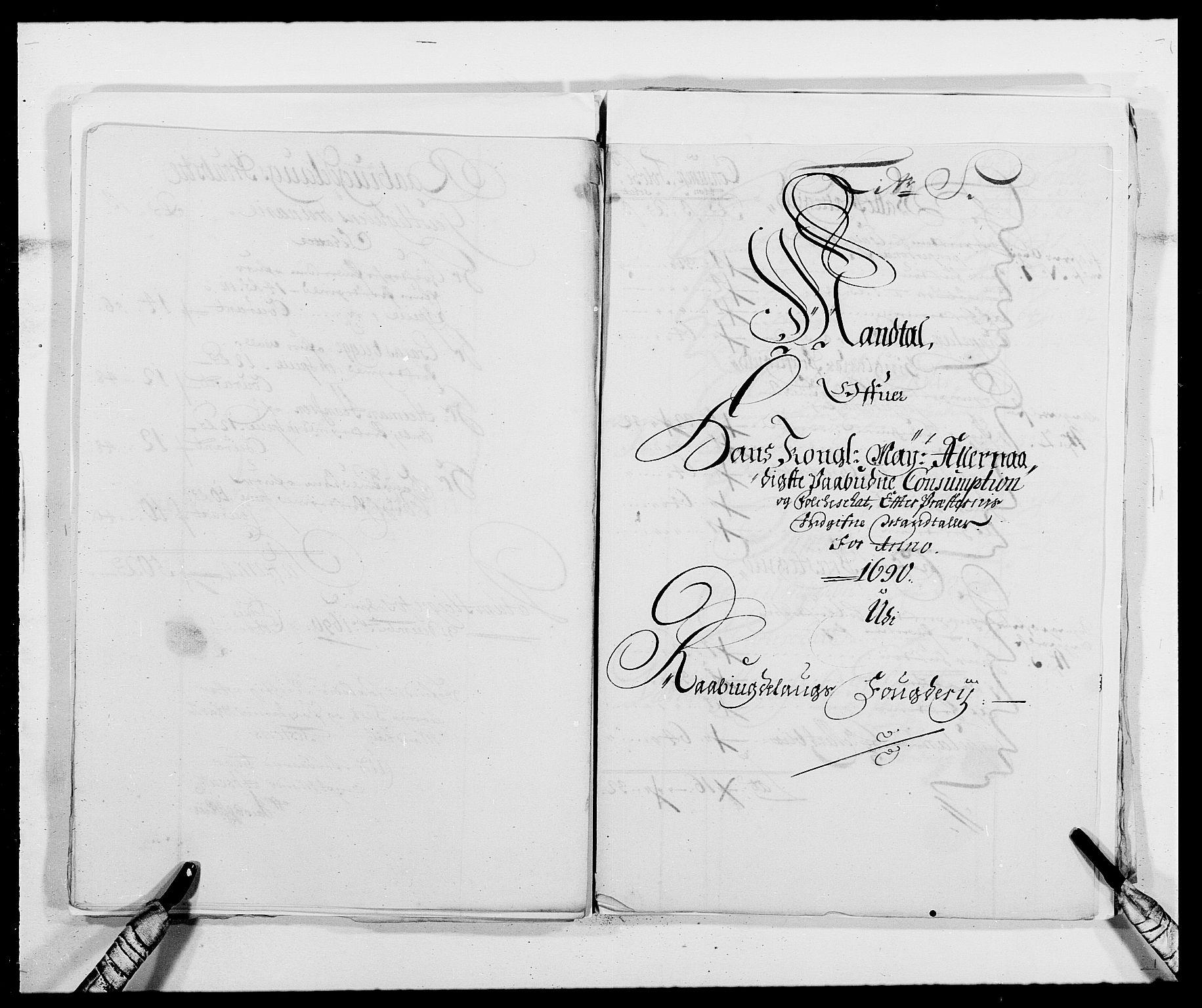 RA, Rentekammeret inntil 1814, Reviderte regnskaper, Fogderegnskap, R40/L2442: Fogderegnskap Råbyggelag, 1689-1690, s. 180