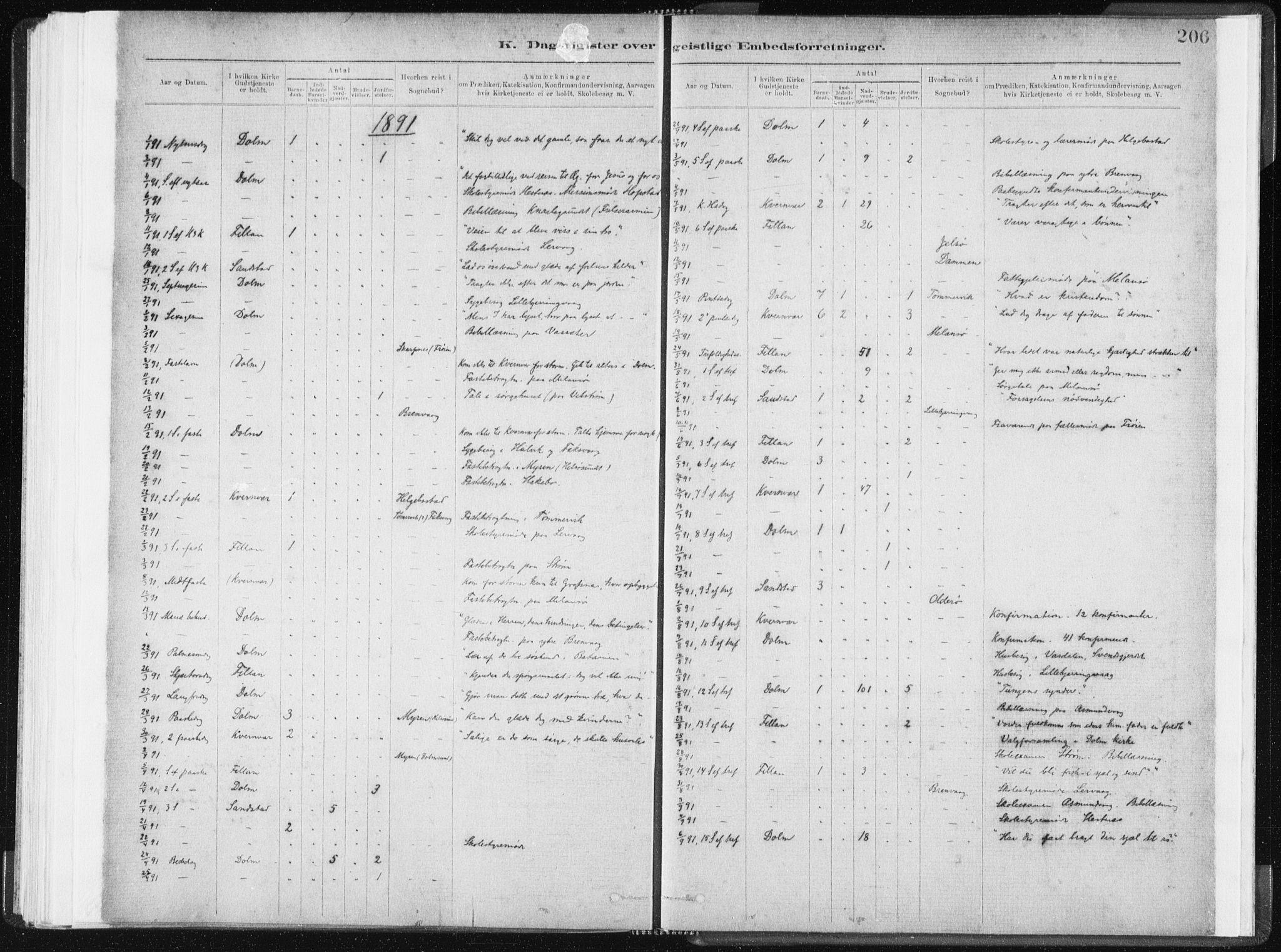 SAT, Ministerialprotokoller, klokkerbøker og fødselsregistre - Sør-Trøndelag, 634/L0533: Ministerialbok nr. 634A09, 1882-1901, s. 206
