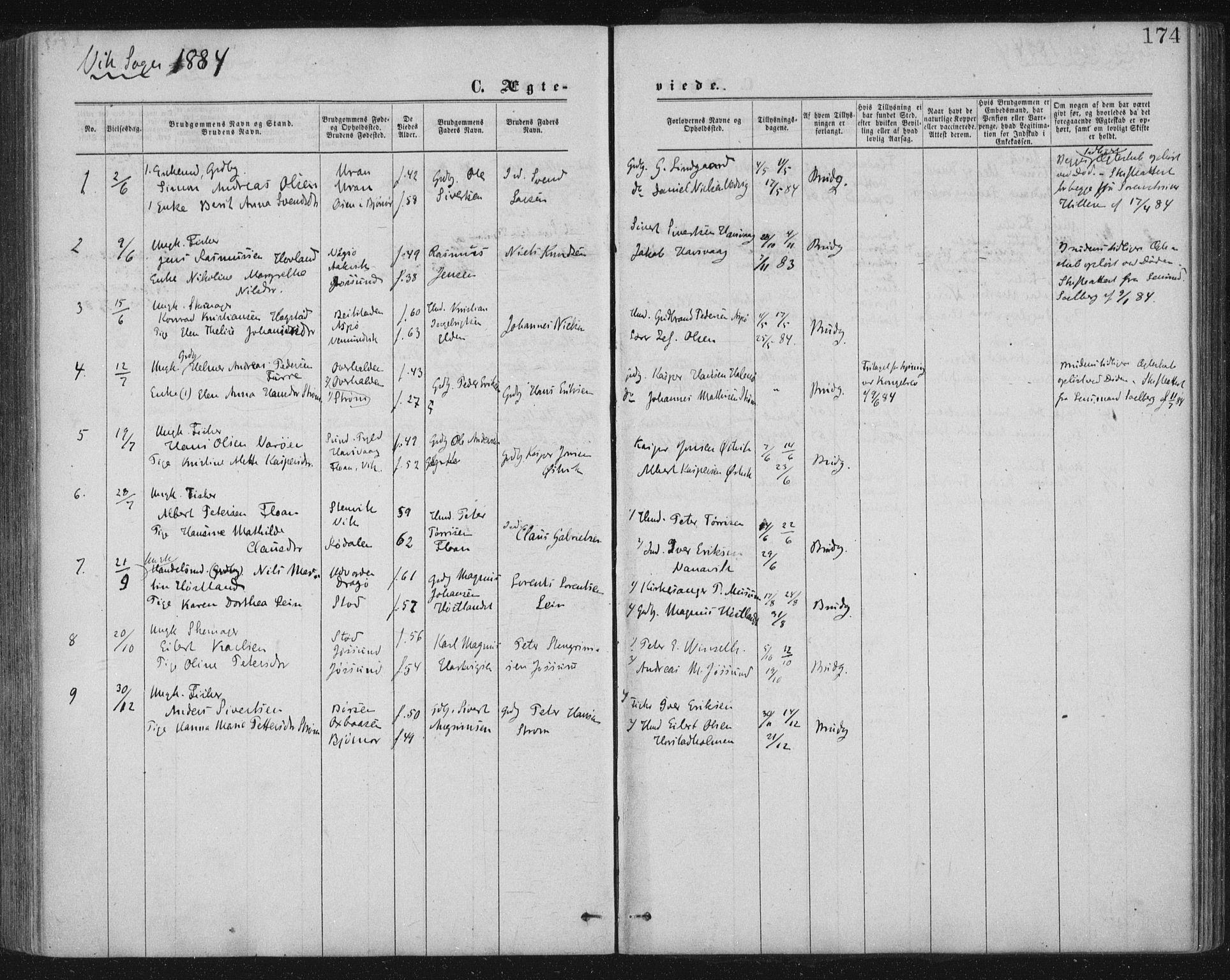 SAT, Ministerialprotokoller, klokkerbøker og fødselsregistre - Nord-Trøndelag, 771/L0596: Ministerialbok nr. 771A03, 1870-1884, s. 174