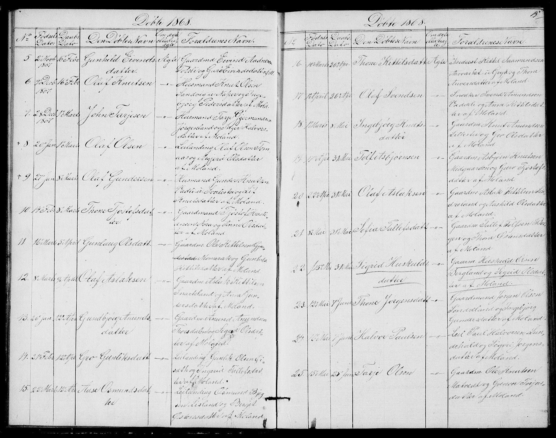 SAKO, Fyresdal kirkebøker, G/Ga/L0004: Klokkerbok nr. I 4, 1864-1892, s. 15