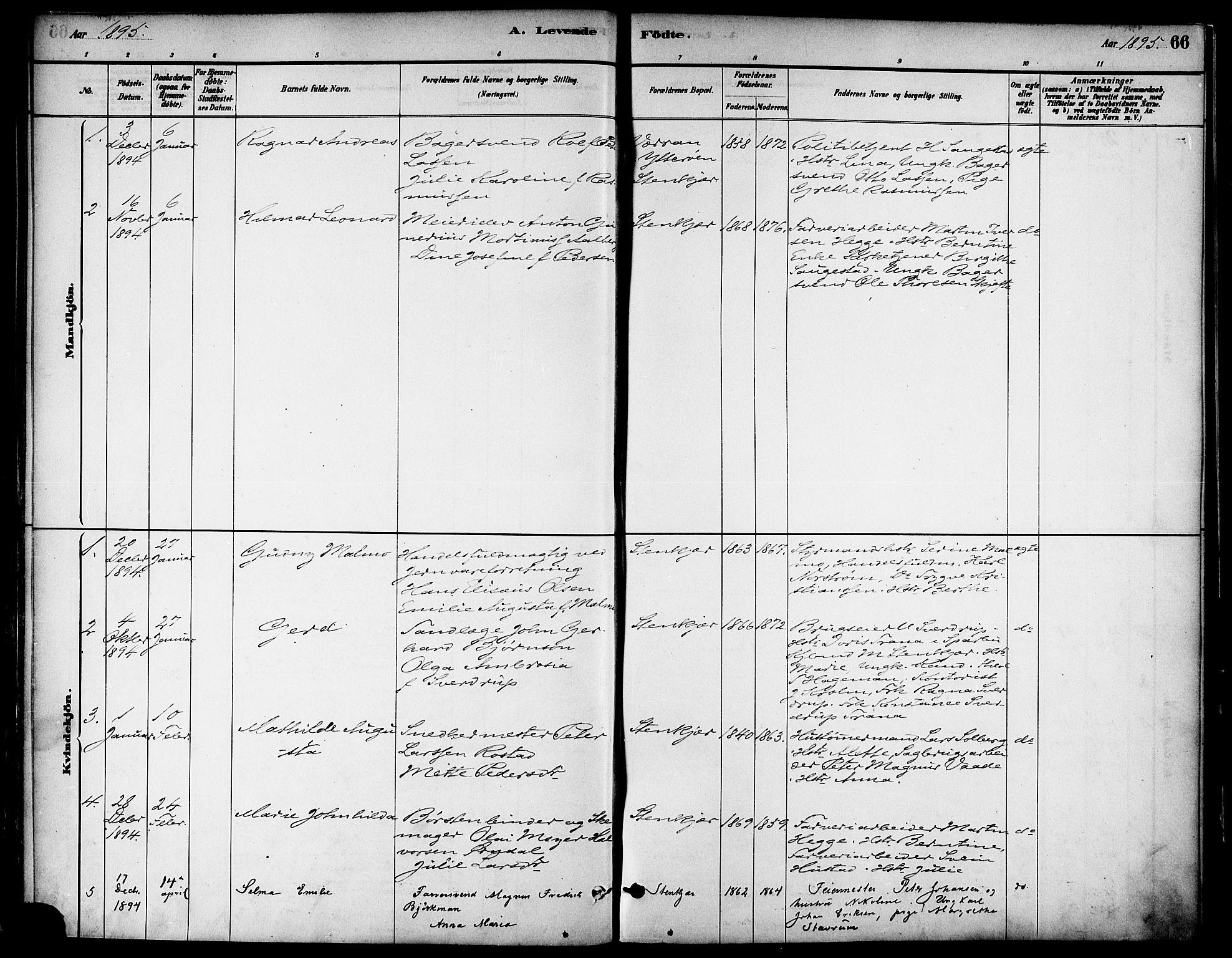 SAT, Ministerialprotokoller, klokkerbøker og fødselsregistre - Nord-Trøndelag, 739/L0371: Ministerialbok nr. 739A03, 1881-1895, s. 66