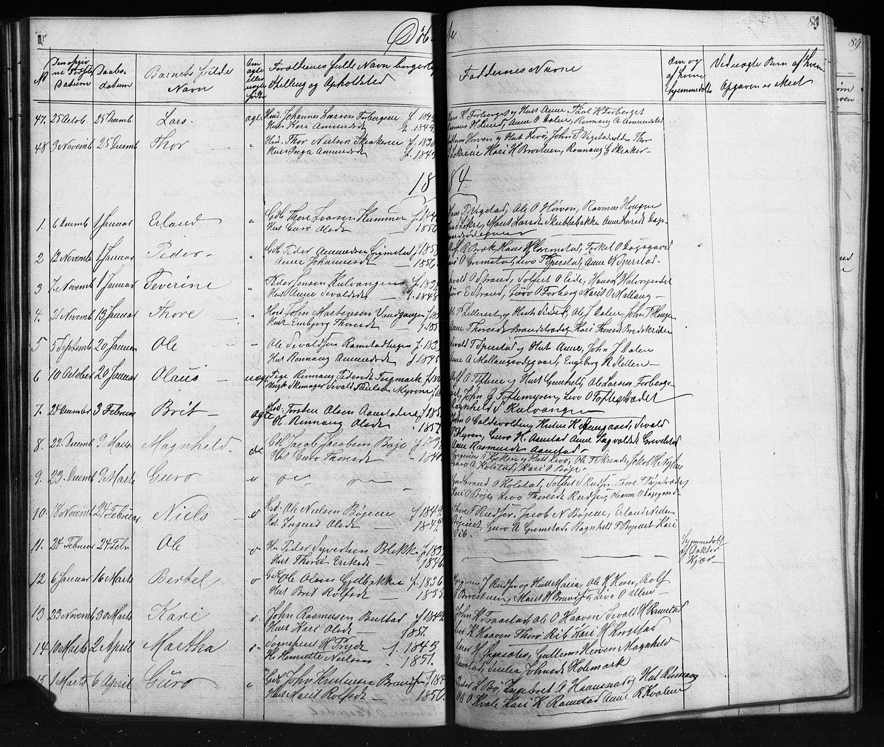 SAH, Skjåk prestekontor, Klokkerbok nr. 1, 1865-1893, s. 80