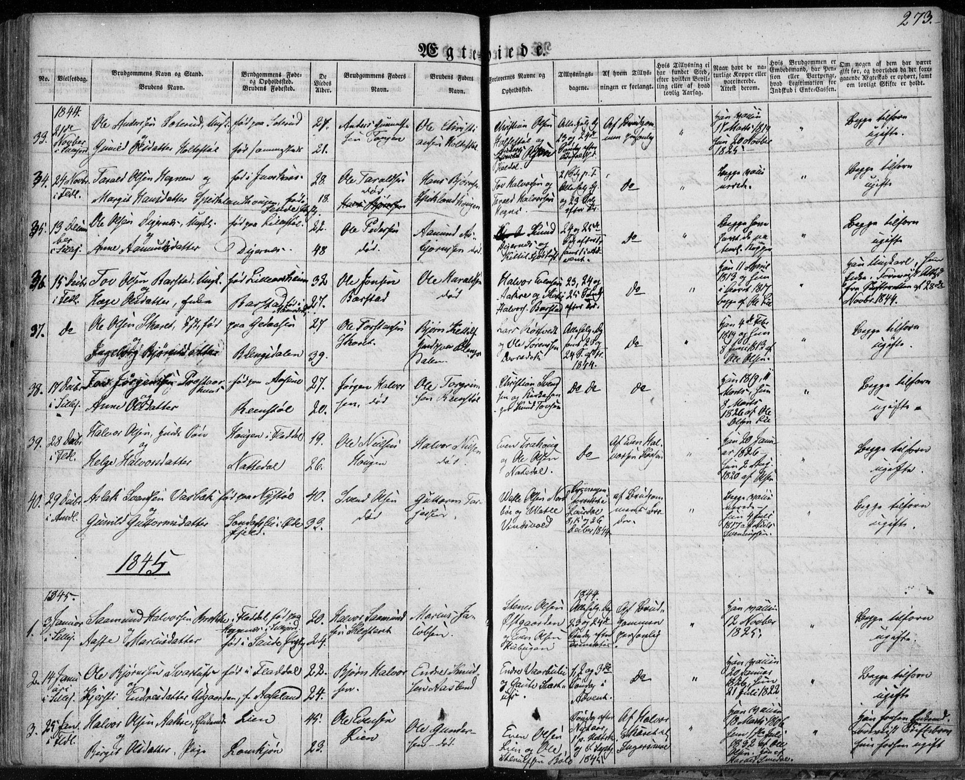 SAKO, Seljord kirkebøker, F/Fa/L0011: Ministerialbok nr. I 11, 1831-1849, s. 273