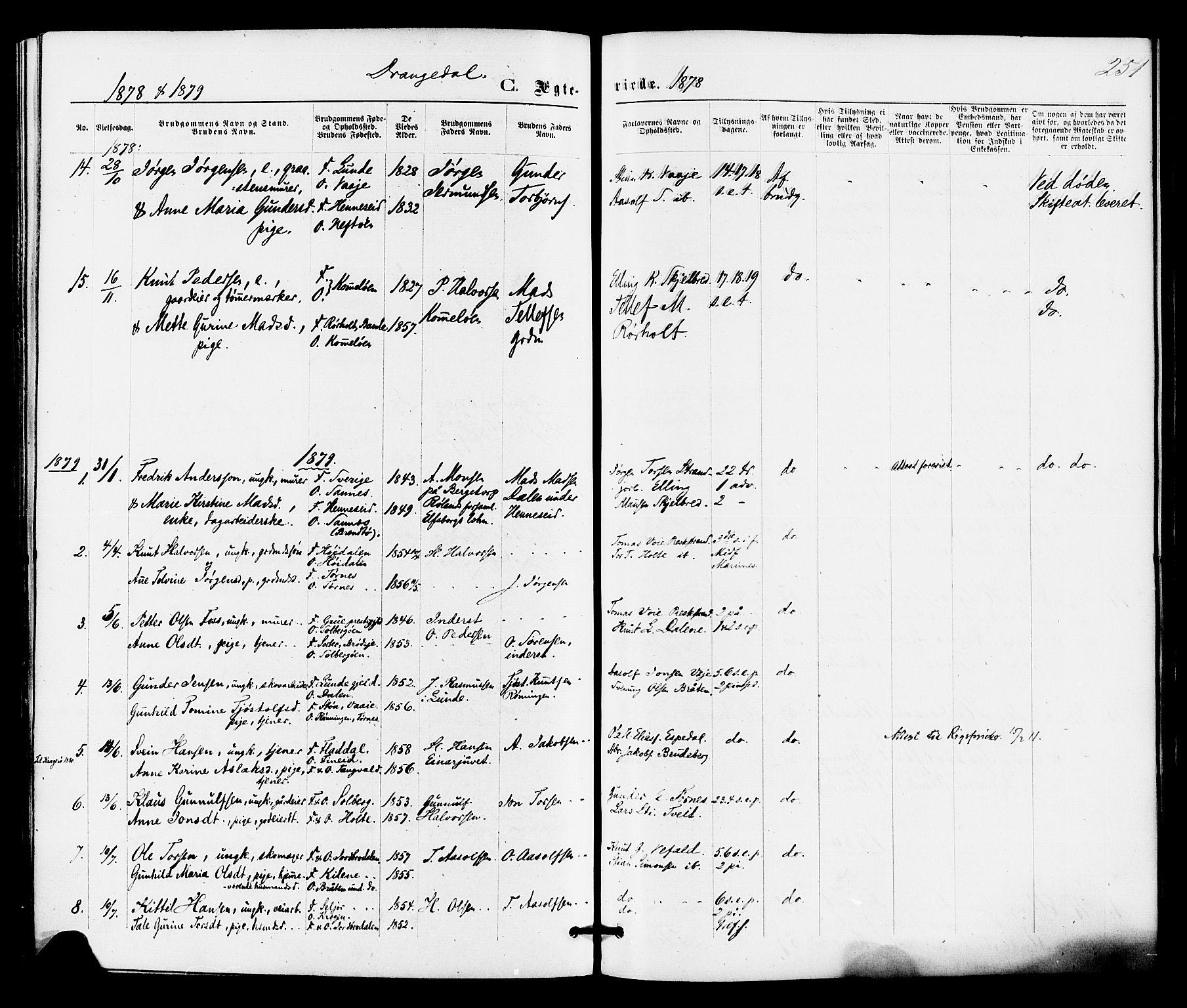SAKO, Drangedal kirkebøker, F/Fa/L0009: Ministerialbok nr. 9 /1, 1872-1884, s. 251