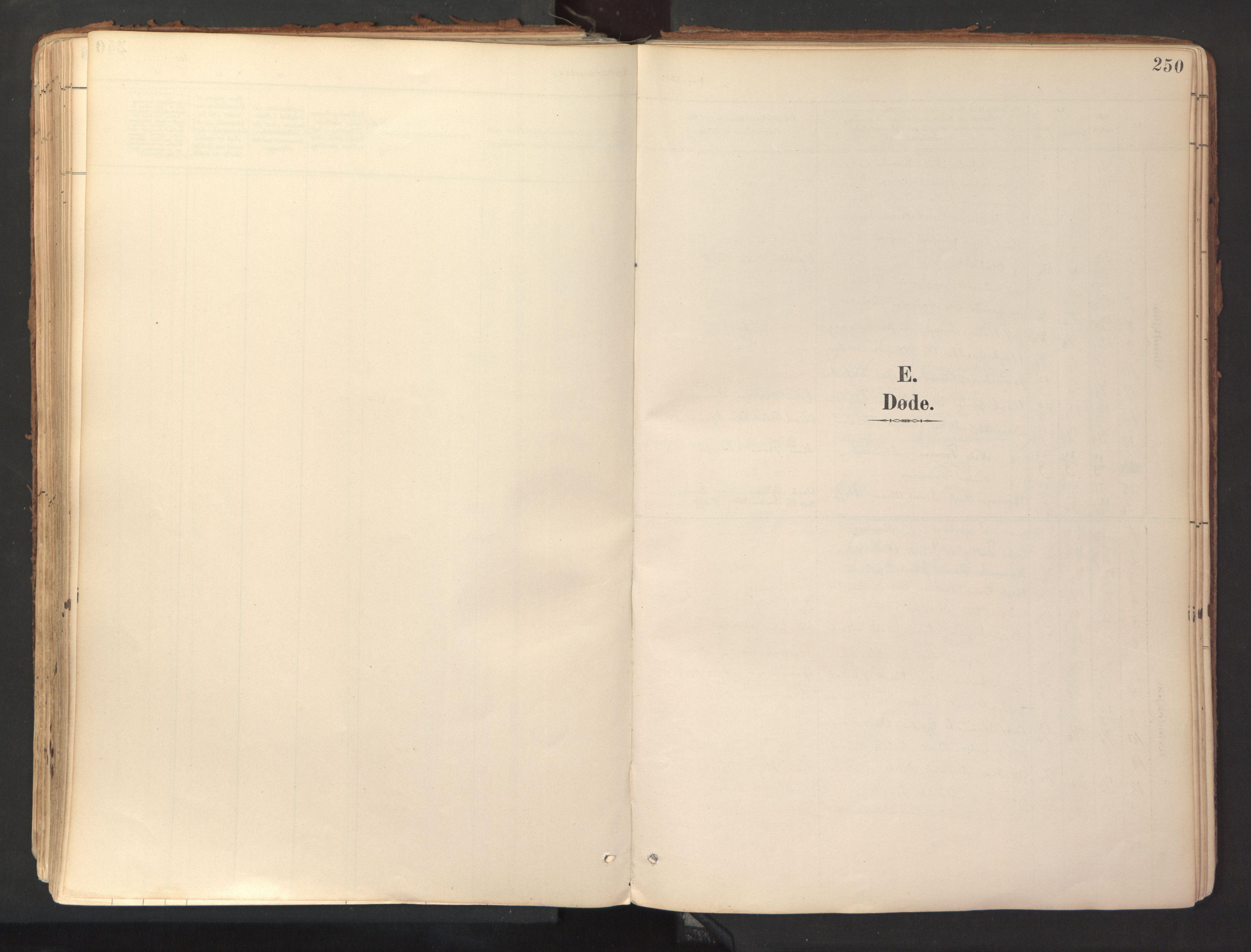 SAT, Ministerialprotokoller, klokkerbøker og fødselsregistre - Sør-Trøndelag, 689/L1041: Ministerialbok nr. 689A06, 1891-1923, s. 250
