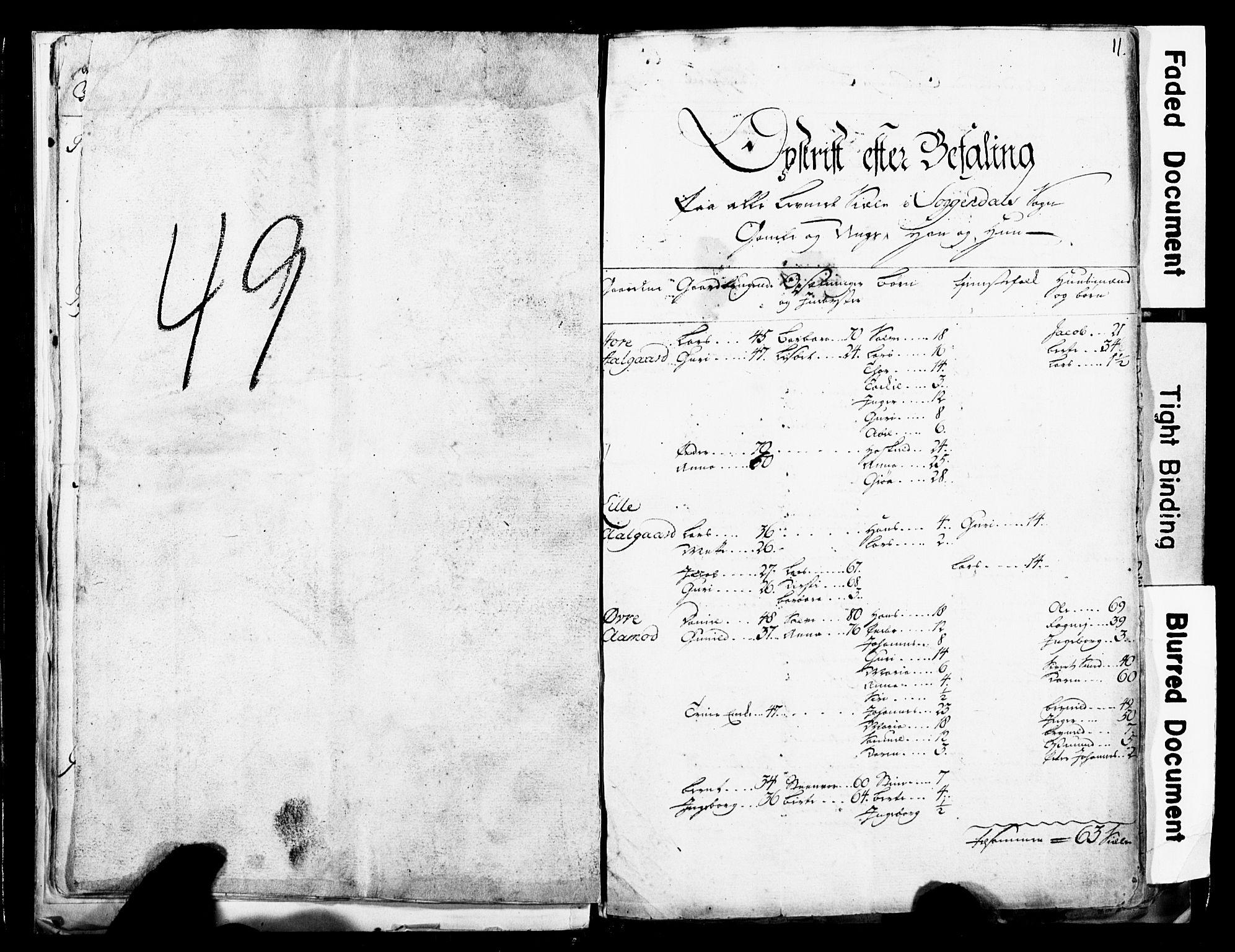 SAST, Fylkesmannen i Rogaland, 3/325/325CA/L0017: SJELEREGISTER JÆREN OG DALANE PRESTEGJELD, 1758, s. 11