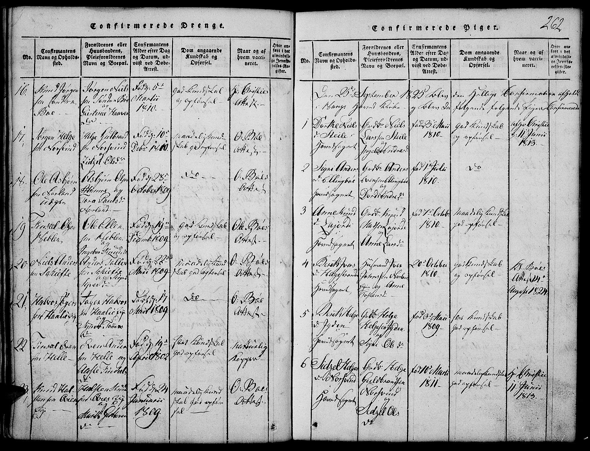 SAH, Vang prestekontor, Valdres, Klokkerbok nr. 2, 1814-1889, s. 262