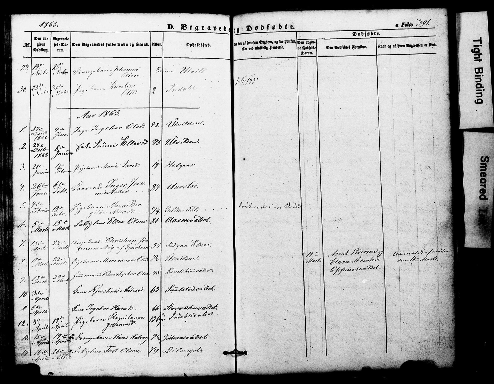SAT, Ministerialprotokoller, klokkerbøker og fødselsregistre - Nord-Trøndelag, 724/L0268: Klokkerbok nr. 724C04, 1846-1878, s. 391