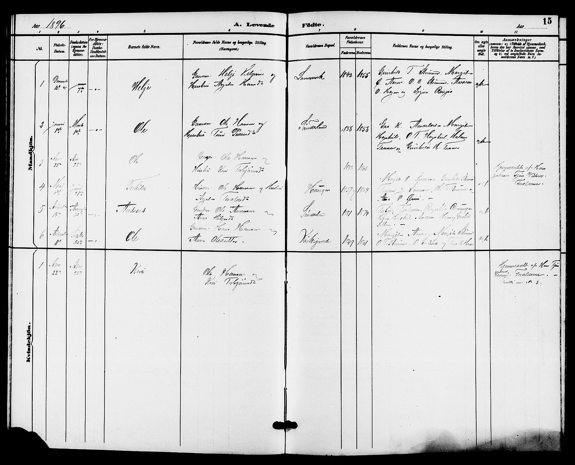 SAKO, Hjartdal kirkebøker, G/Gc/L0003: Klokkerbok nr. III 3, 1890-1907, s. 15