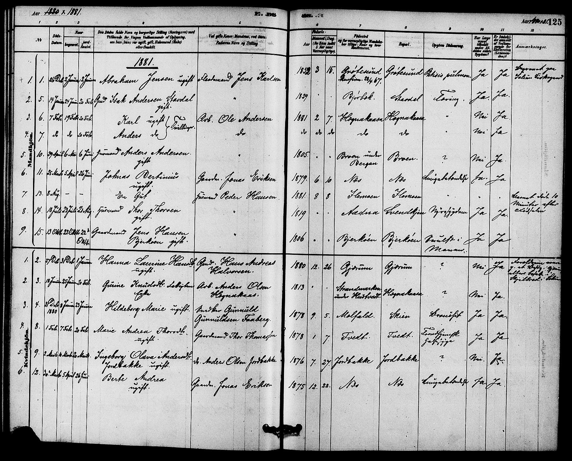 SAKO, Solum kirkebøker, F/Fb/L0001: Ministerialbok nr. II 1, 1877-1892, s. 125
