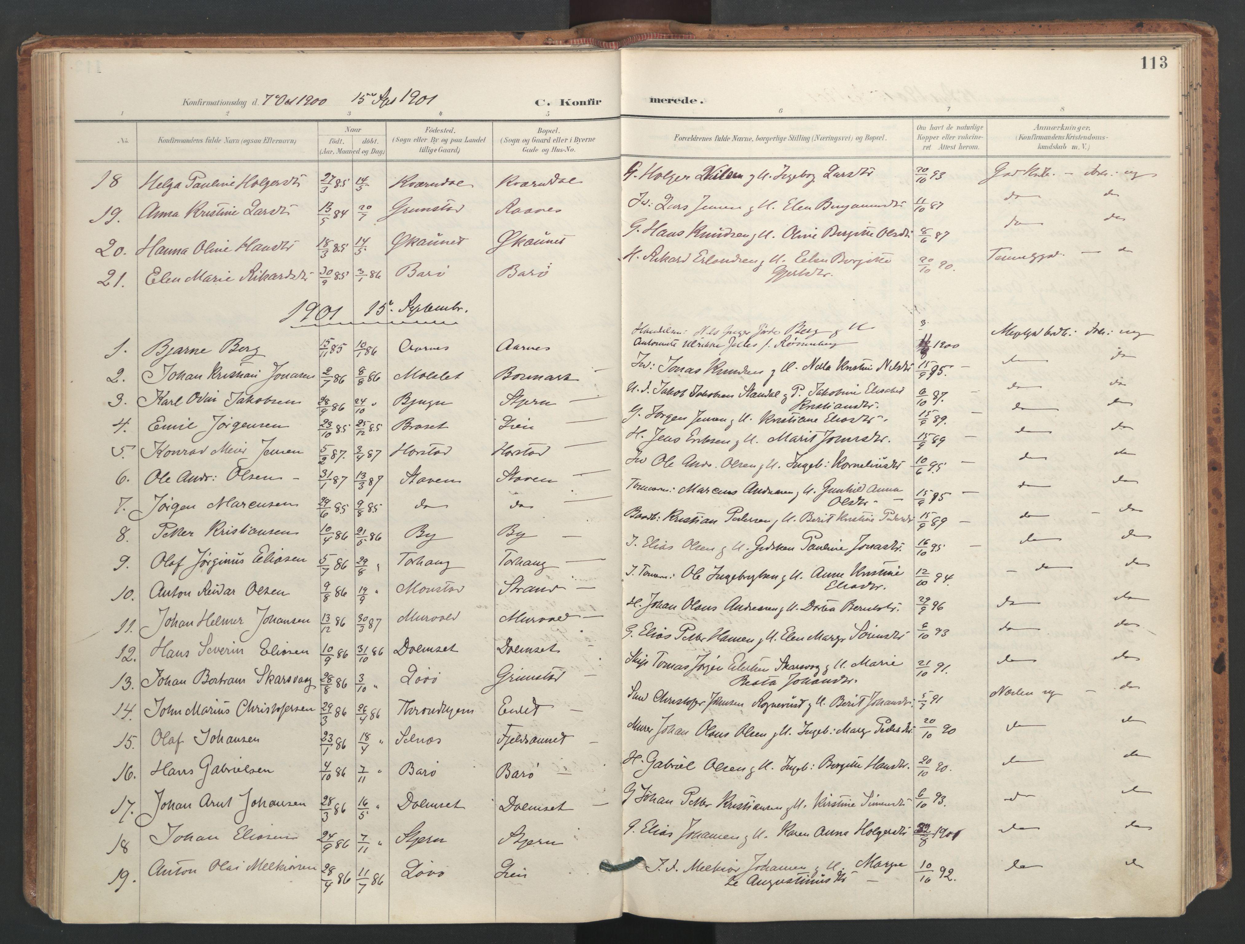 SAT, Ministerialprotokoller, klokkerbøker og fødselsregistre - Sør-Trøndelag, 655/L0681: Ministerialbok nr. 655A10, 1895-1907, s. 113