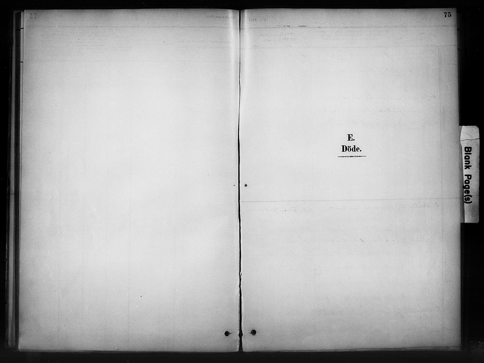 SAH, Nord-Aurdal prestekontor, Ministerialbok nr. 11, 1883-1896, s. 75