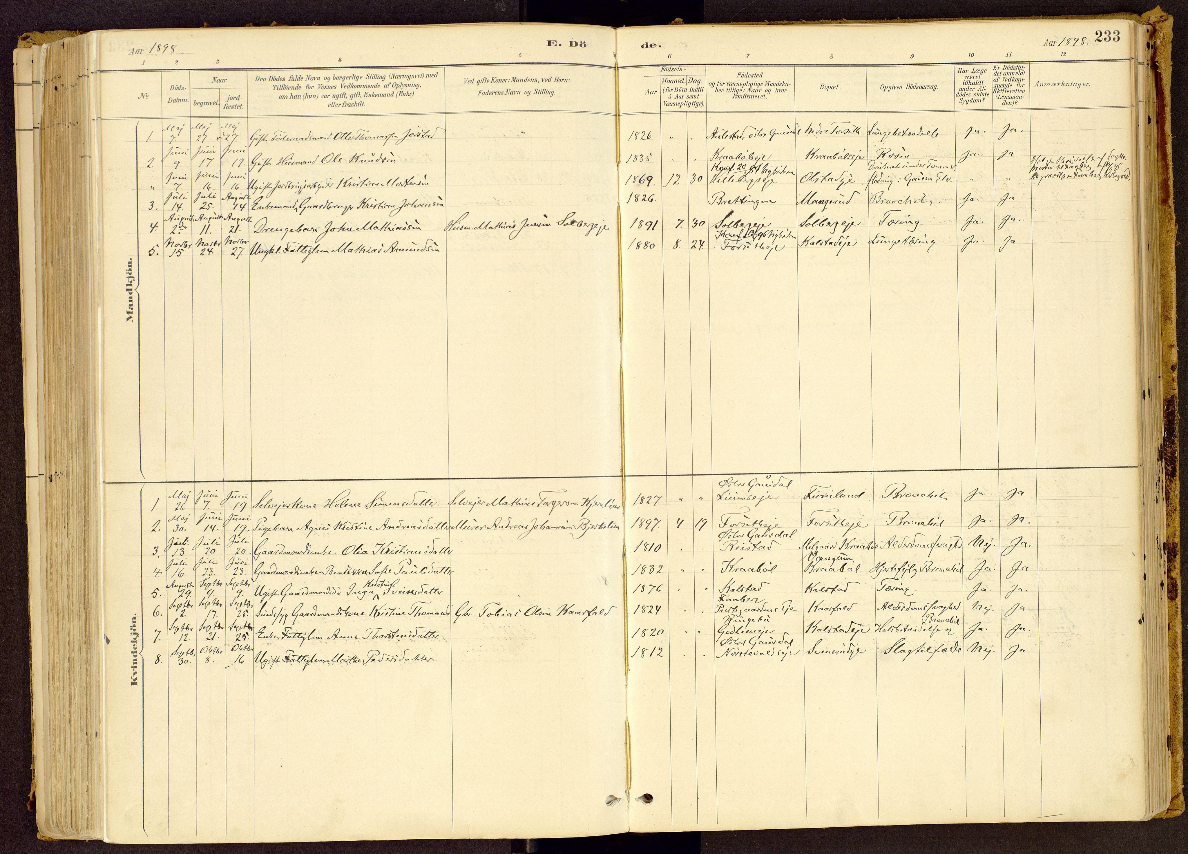 SAH, Vestre Gausdal prestekontor, Ministerialbok nr. 1, 1887-1914, s. 233