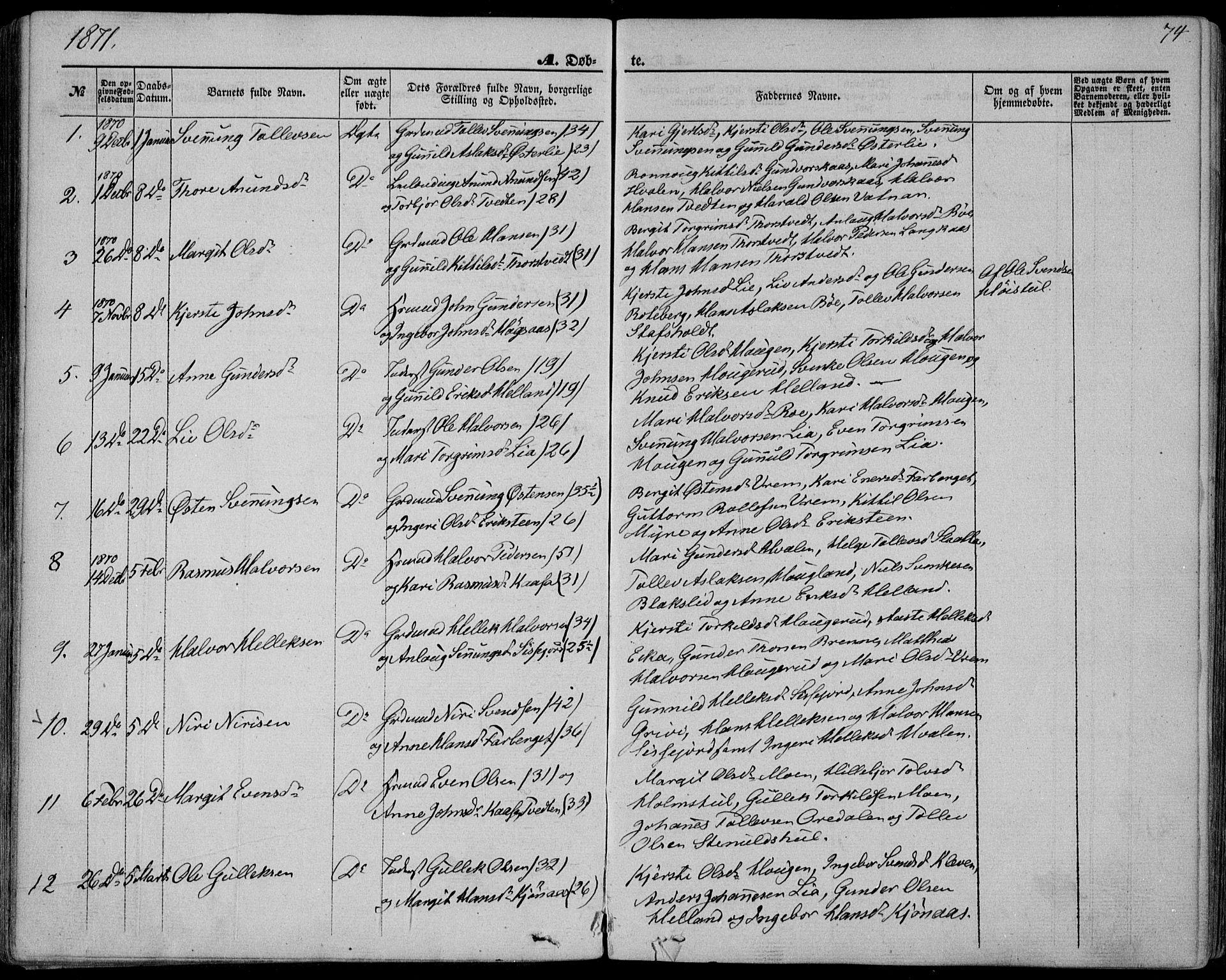 SAKO, Bø kirkebøker, F/Fa/L0009: Ministerialbok nr. 9, 1862-1879, s. 74