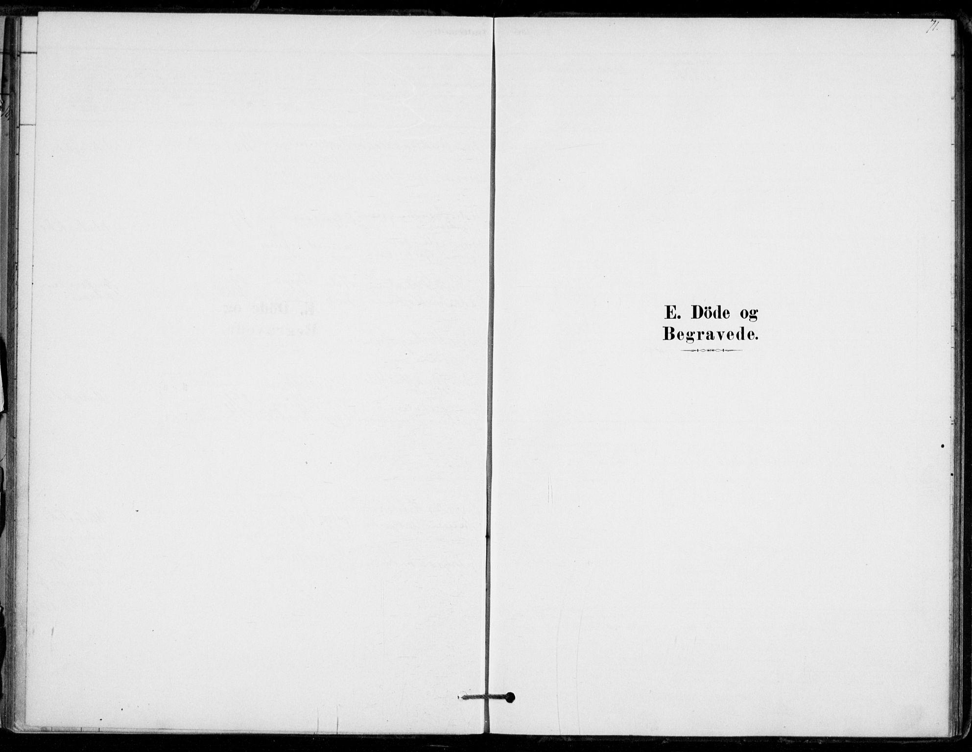 SAKO, Hof kirkebøker, F/Fb/L0001: Ministerialbok nr. II 1, 1878-1907, s. 71