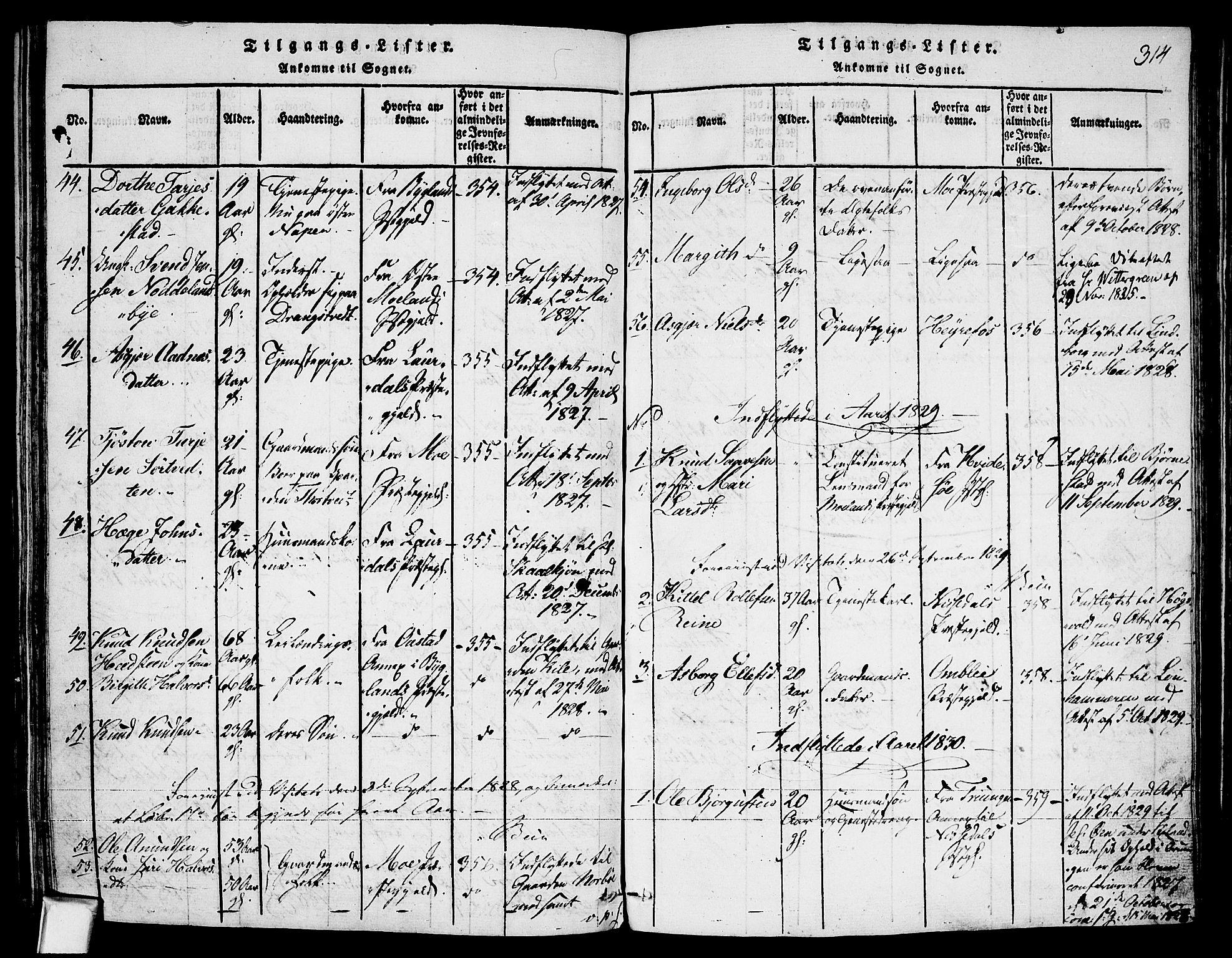 SAKO, Fyresdal kirkebøker, F/Fa/L0003: Ministerialbok nr. I 3, 1815-1840, s. 314