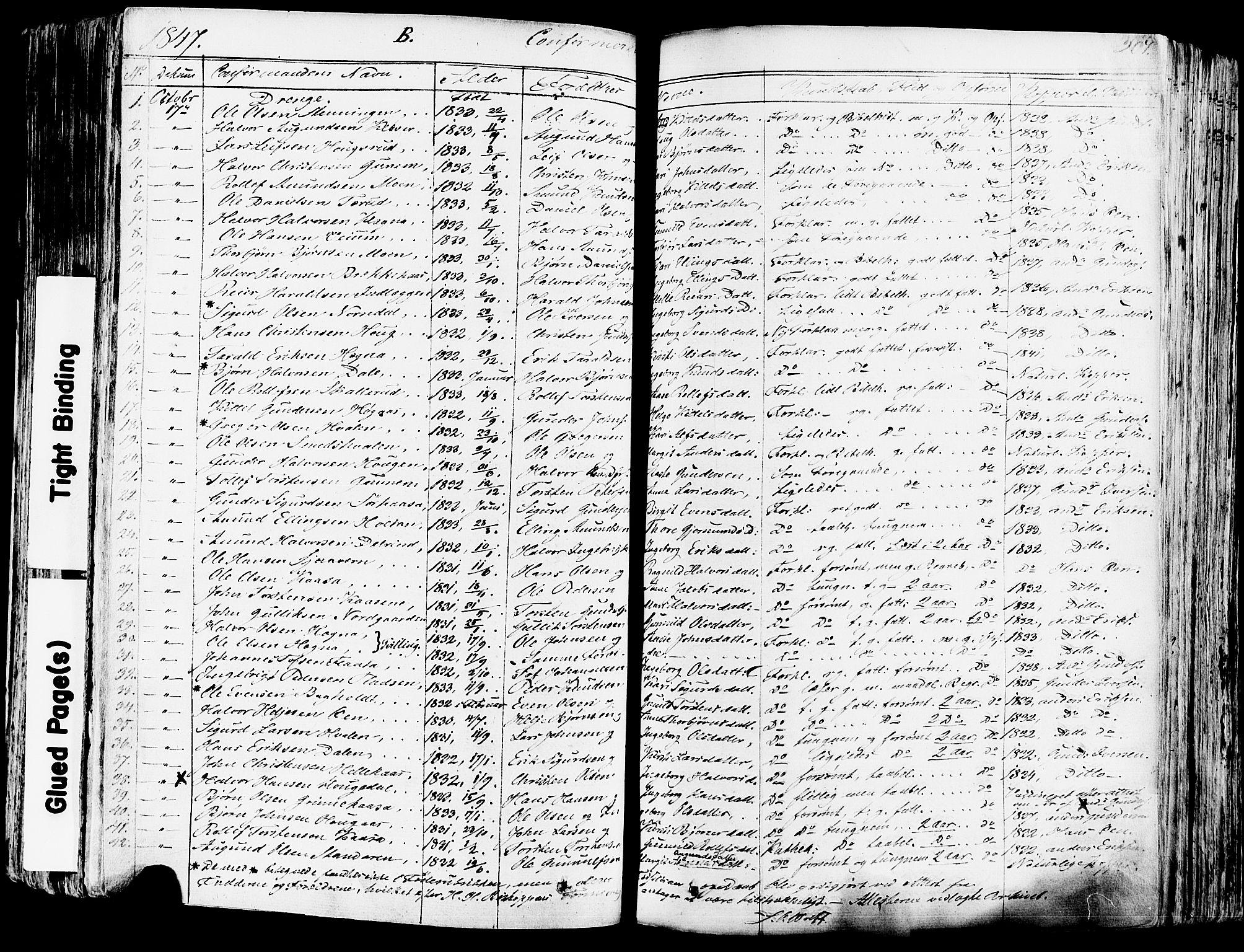 SAKO, Sauherad kirkebøker, F/Fa/L0006: Ministerialbok nr. I 6, 1827-1850, s. 207