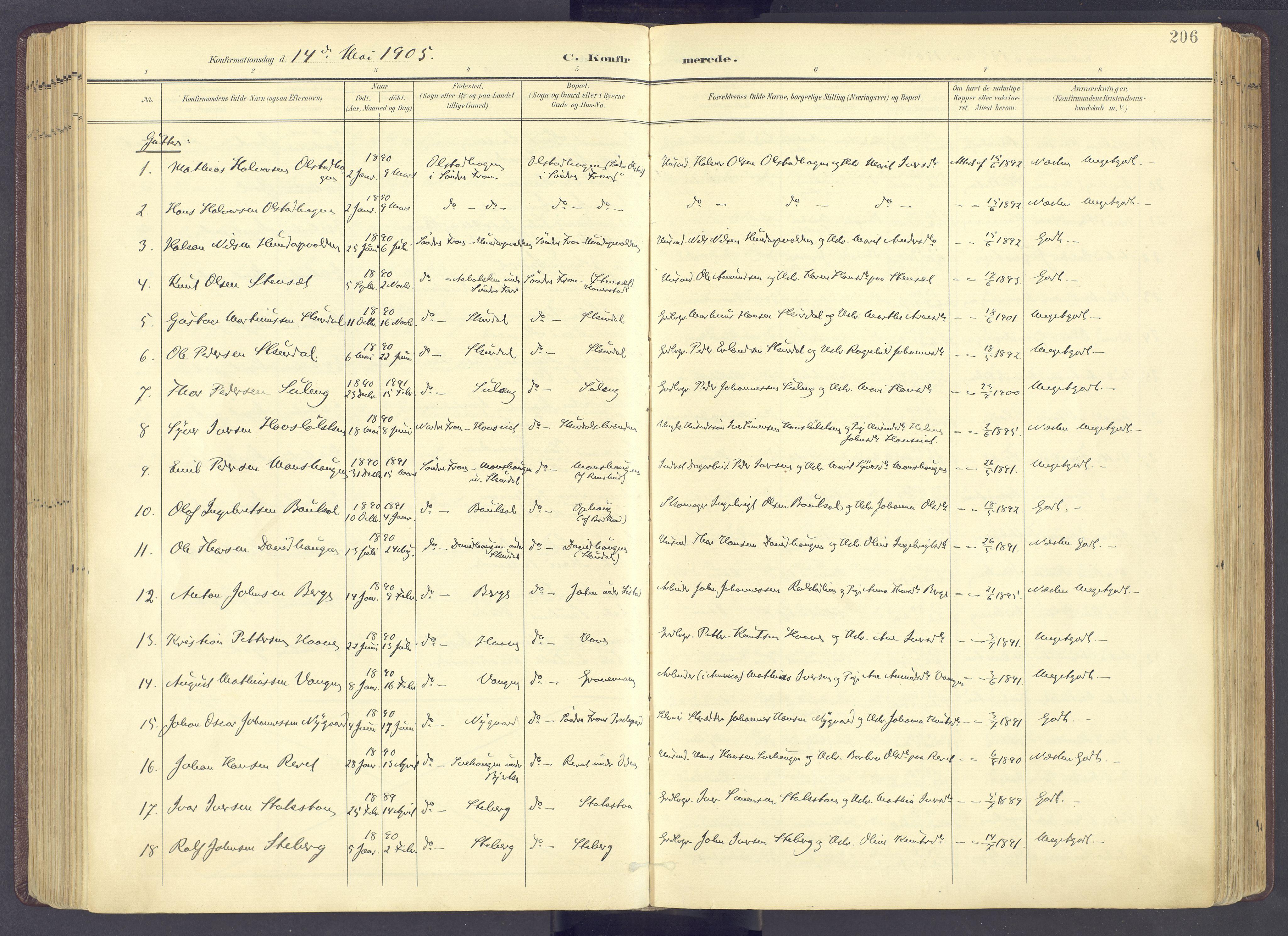 SAH, Sør-Fron prestekontor, H/Ha/Haa/L0004: Ministerialbok nr. 4, 1898-1919, s. 206