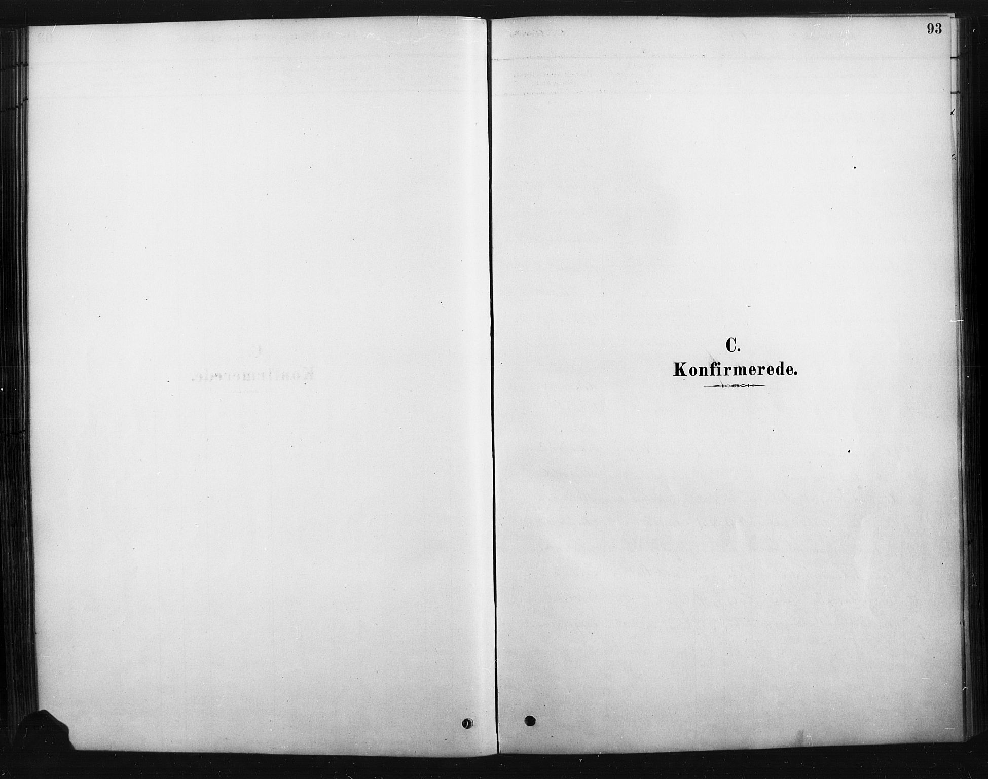 SAH, Rendalen prestekontor, H/Ha/Haa/L0010: Ministerialbok nr. 10, 1878-1901, s. 93