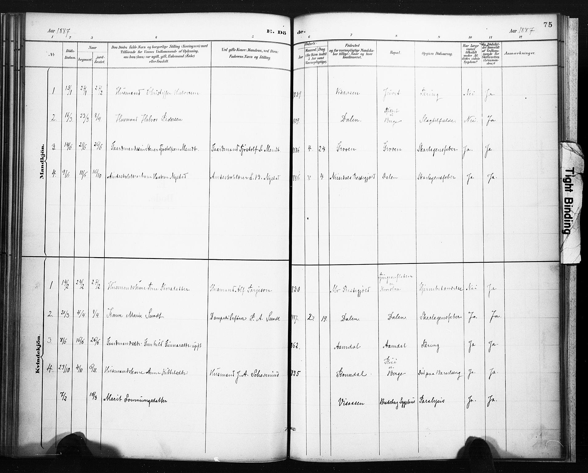 SAKO, Lårdal kirkebøker, F/Fb/L0002: Ministerialbok nr. II 2, 1887-1918, s. 75