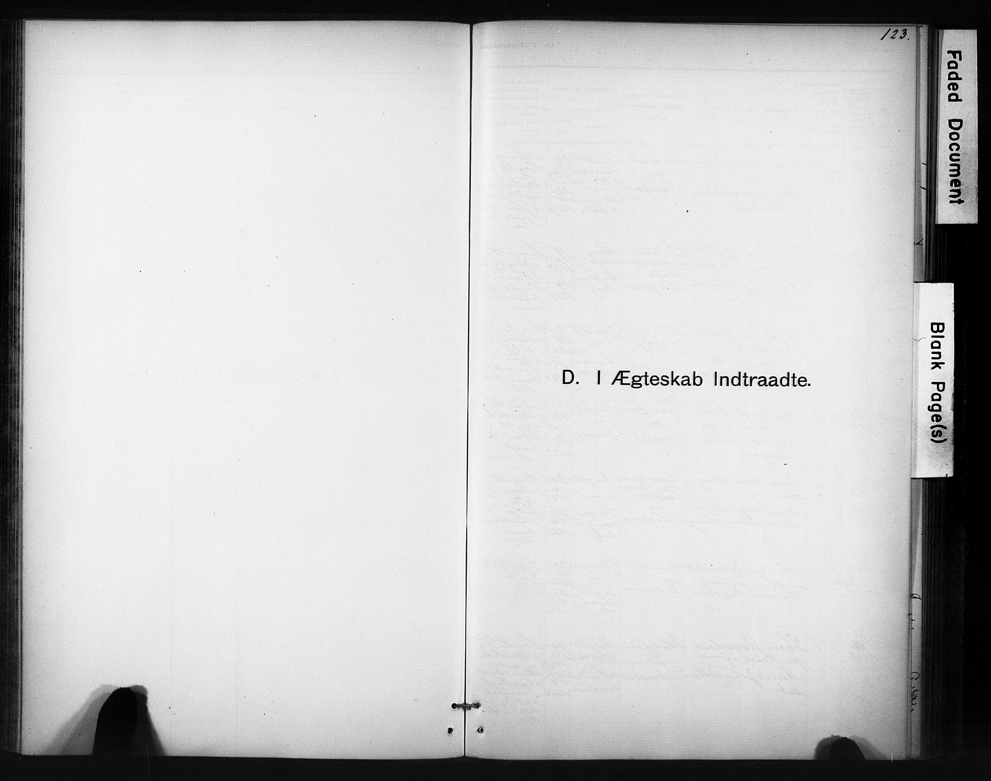 SAT, Ministerialprotokoller, klokkerbøker og fødselsregistre - Sør-Trøndelag, 694/L1127: Ministerialbok nr. 694A01, 1887-1905, s. 123