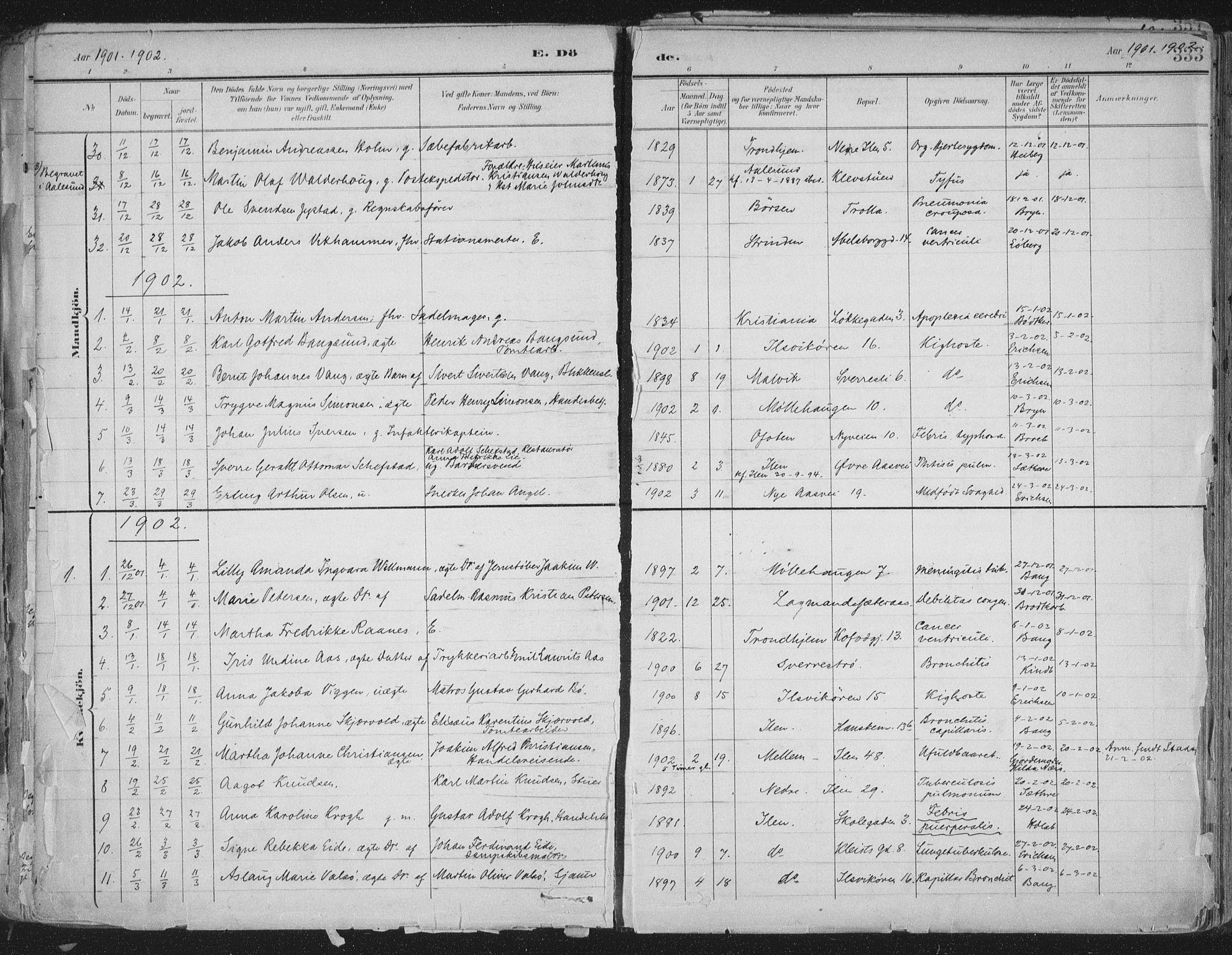 SAT, Ministerialprotokoller, klokkerbøker og fødselsregistre - Sør-Trøndelag, 603/L0167: Ministerialbok nr. 603A06, 1896-1932, s. 333