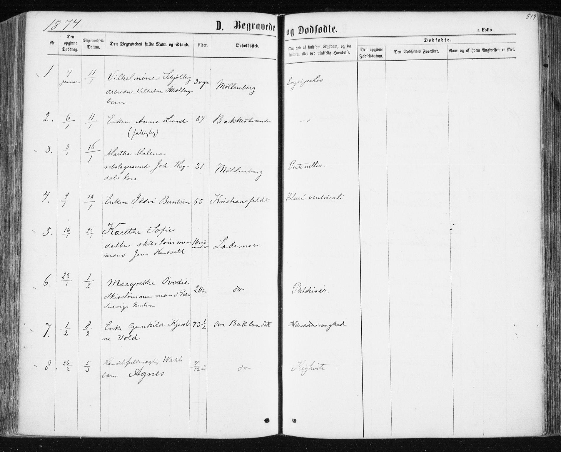 SAT, Ministerialprotokoller, klokkerbøker og fødselsregistre - Sør-Trøndelag, 604/L0186: Ministerialbok nr. 604A07, 1866-1877, s. 519
