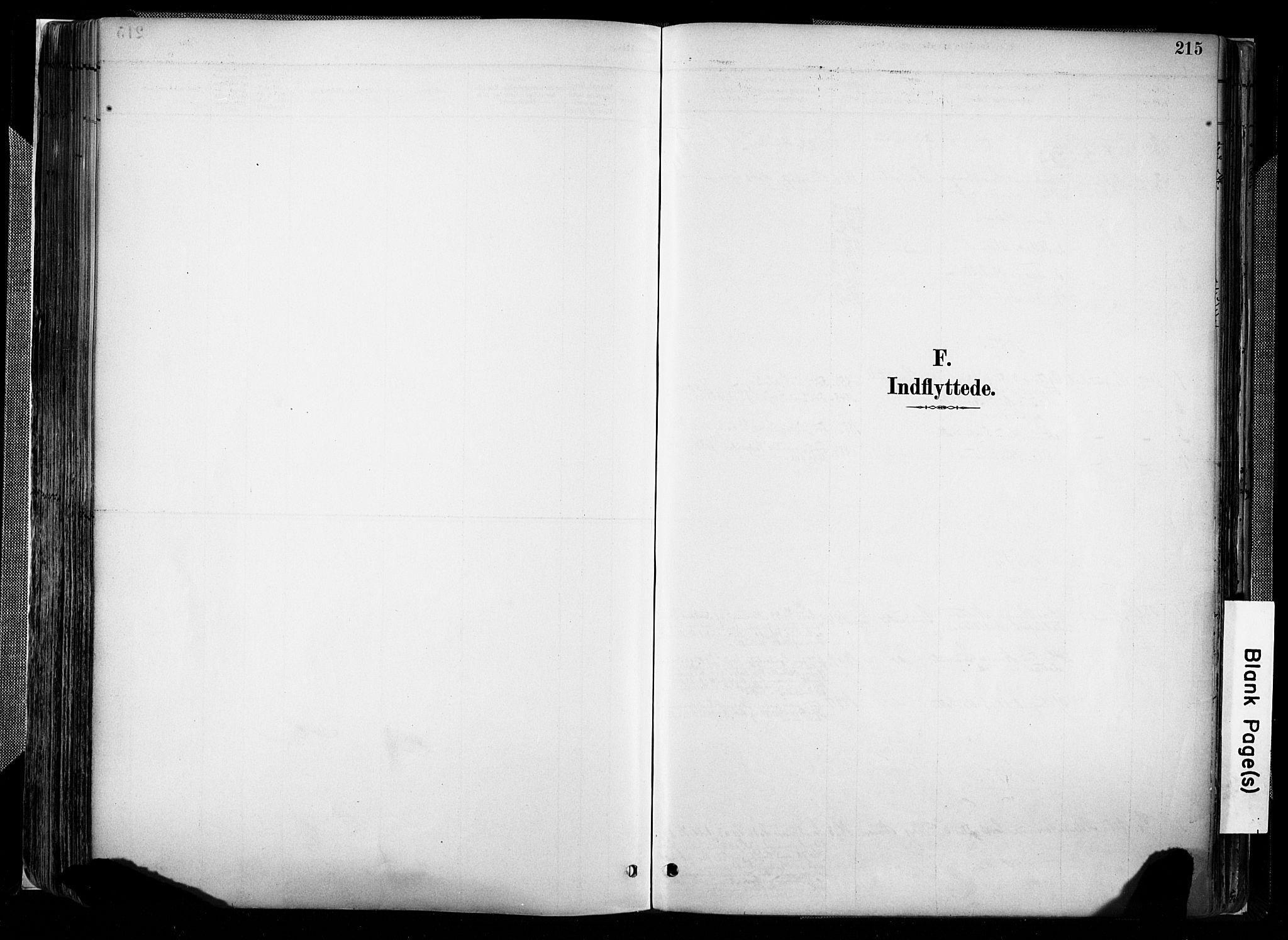 SAK, Evje sokneprestkontor, F/Fa/Faa/L0007: Ministerialbok nr. A 7, 1884-1909, s. 215
